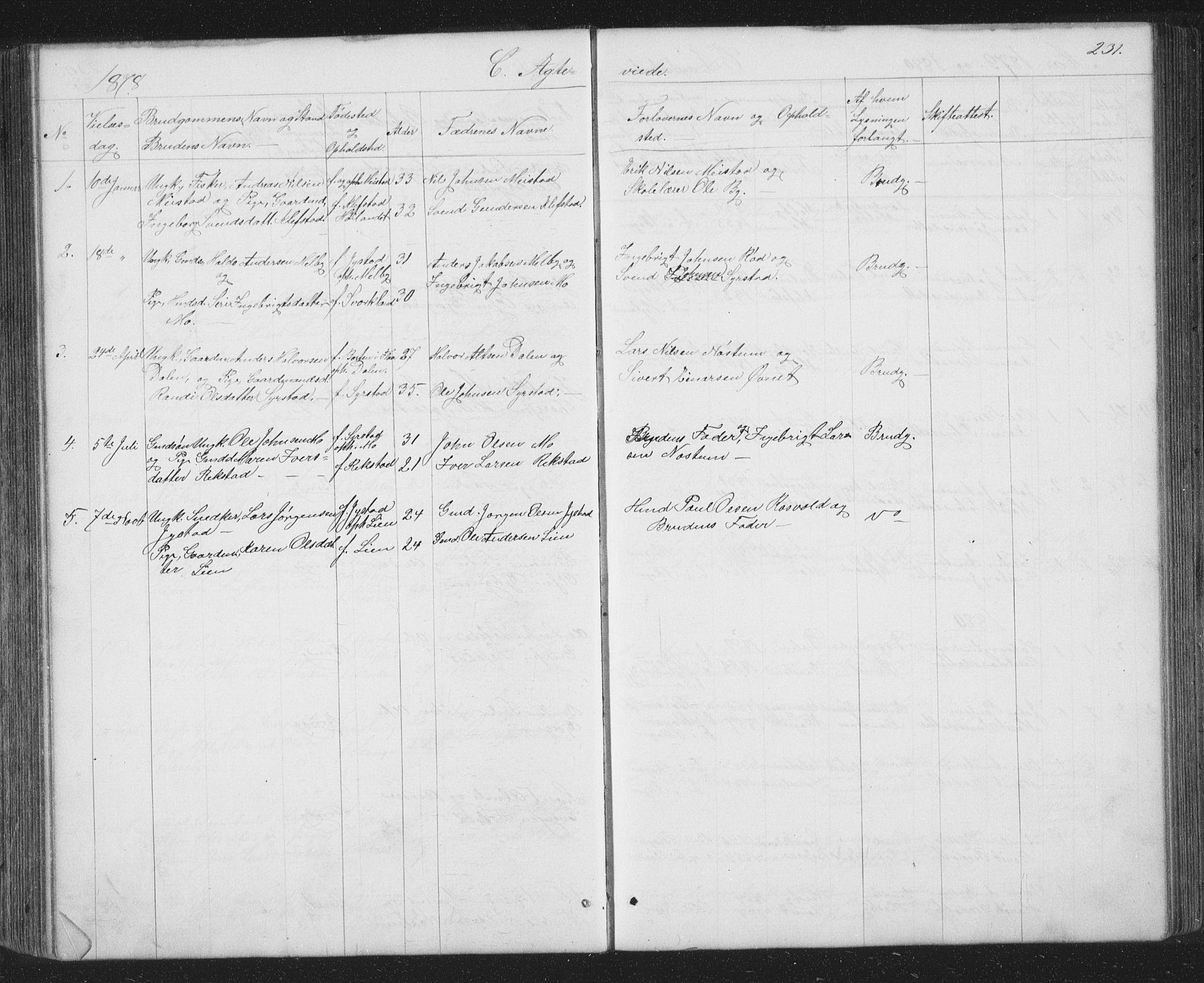 SAT, Ministerialprotokoller, klokkerbøker og fødselsregistre - Sør-Trøndelag, 667/L0798: Klokkerbok nr. 667C03, 1867-1929, s. 231