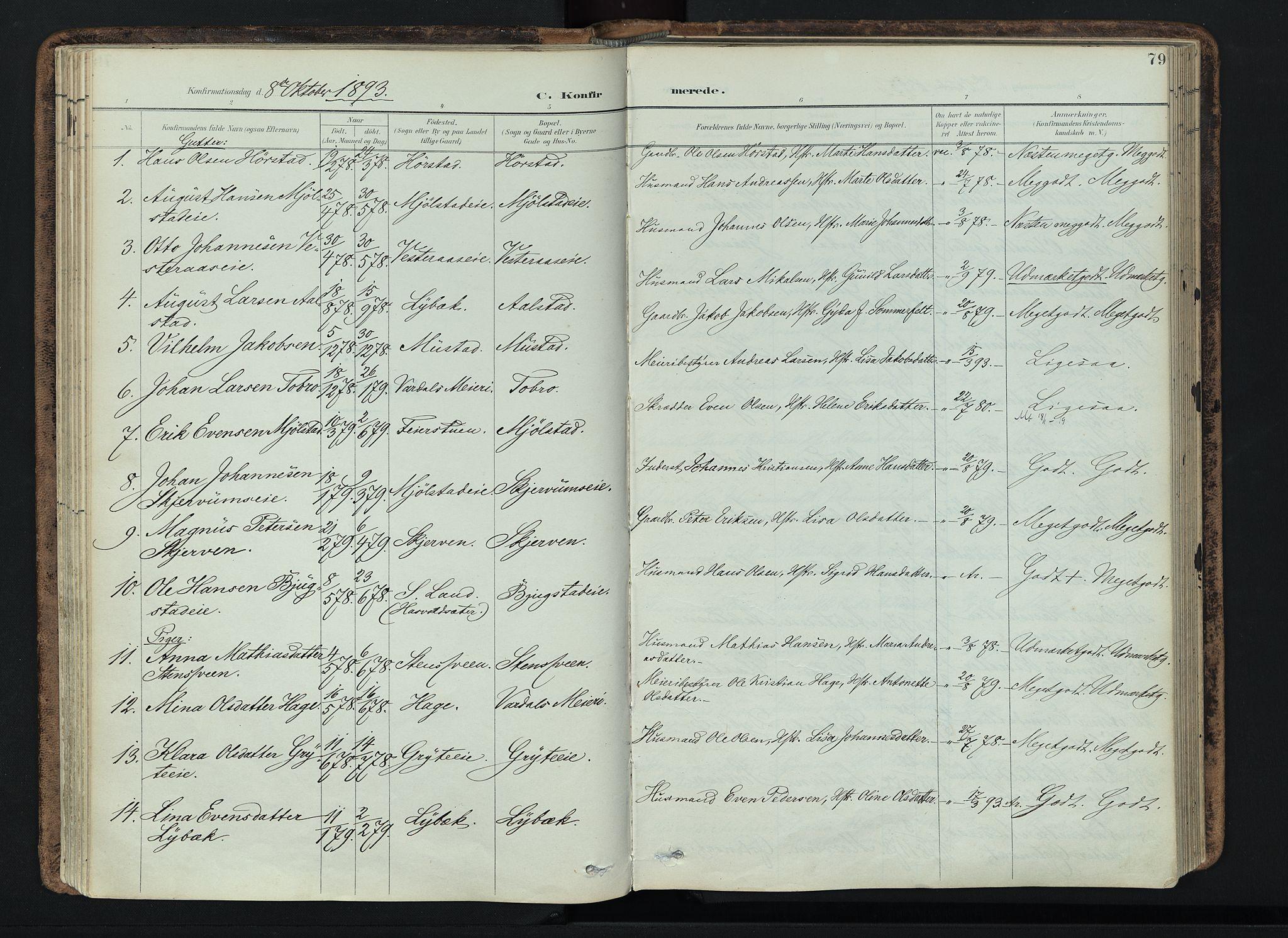 SAH, Vardal prestekontor, H/Ha/Haa/L0019: Ministerialbok nr. 19, 1893-1907, s. 79