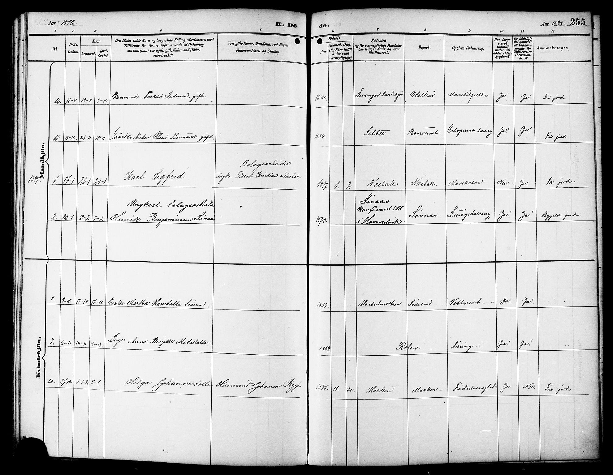 SAT, Ministerialprotokoller, klokkerbøker og fødselsregistre - Sør-Trøndelag, 617/L0431: Klokkerbok nr. 617C01, 1889-1910, s. 255