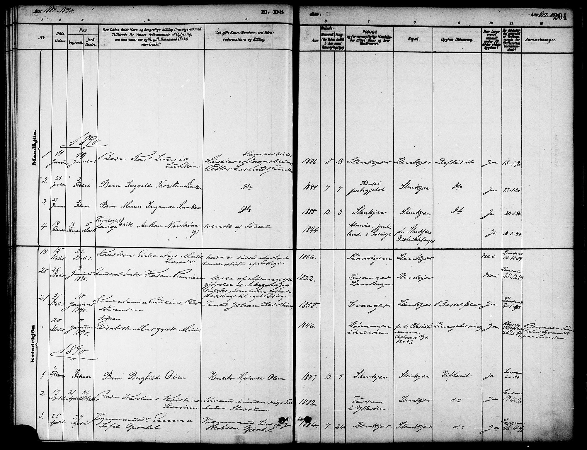 SAT, Ministerialprotokoller, klokkerbøker og fødselsregistre - Nord-Trøndelag, 739/L0371: Ministerialbok nr. 739A03, 1881-1895, s. 204