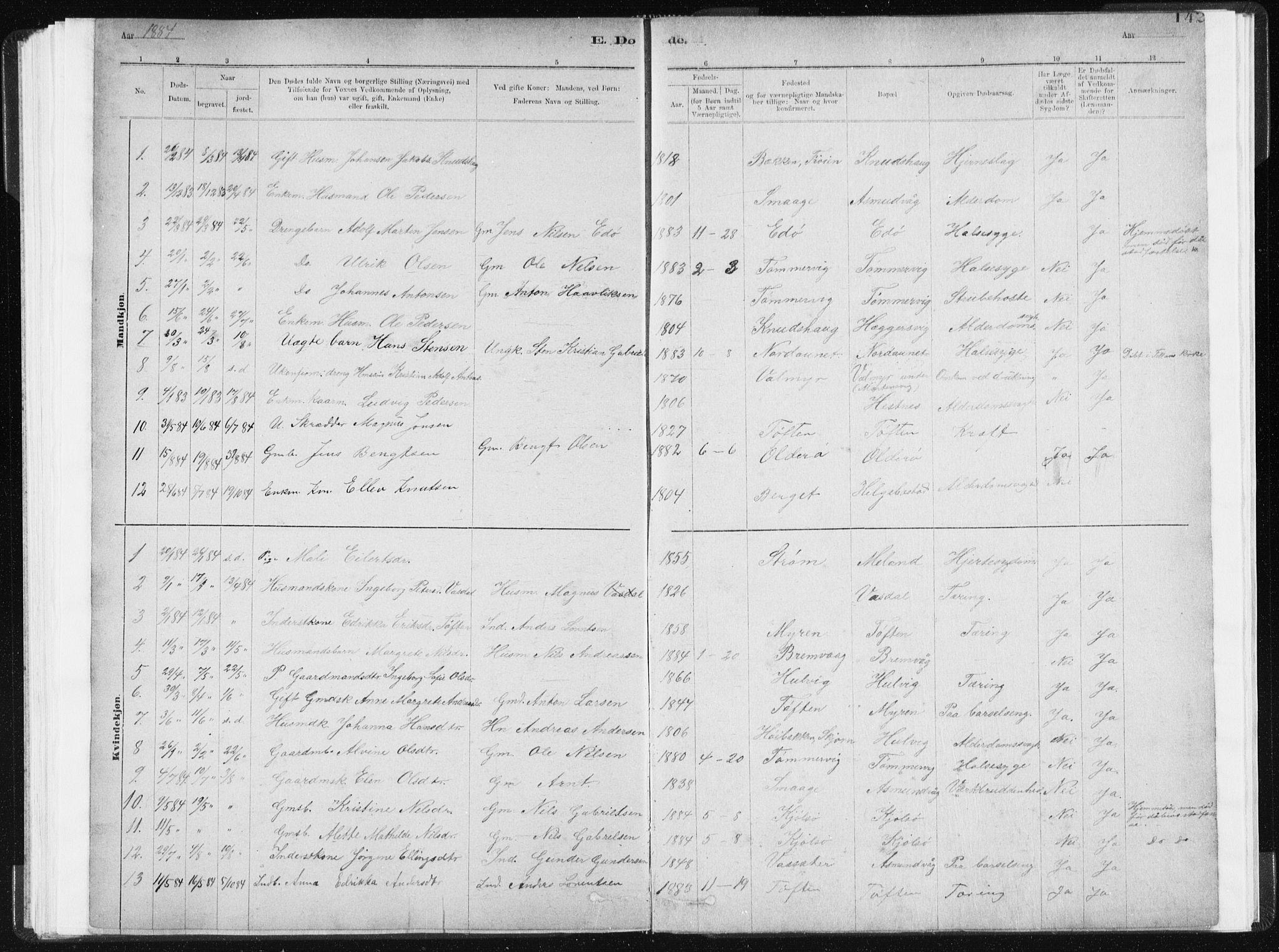 SAT, Ministerialprotokoller, klokkerbøker og fødselsregistre - Sør-Trøndelag, 634/L0533: Ministerialbok nr. 634A09, 1882-1901, s. 142