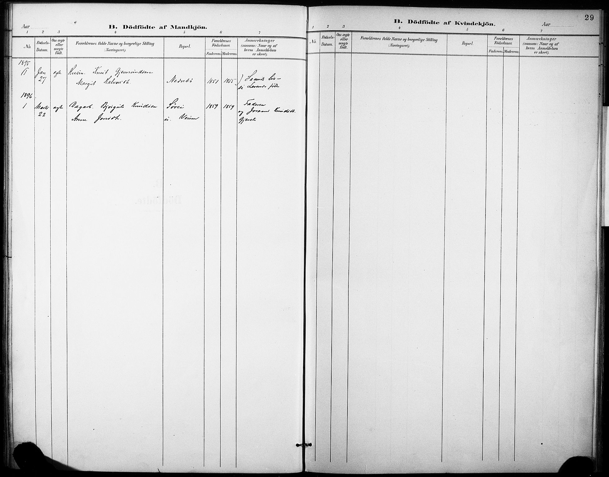 SAKO, Fyresdal kirkebøker, F/Fb/L0003: Ministerialbok nr. II 3, 1887-1903, s. 29