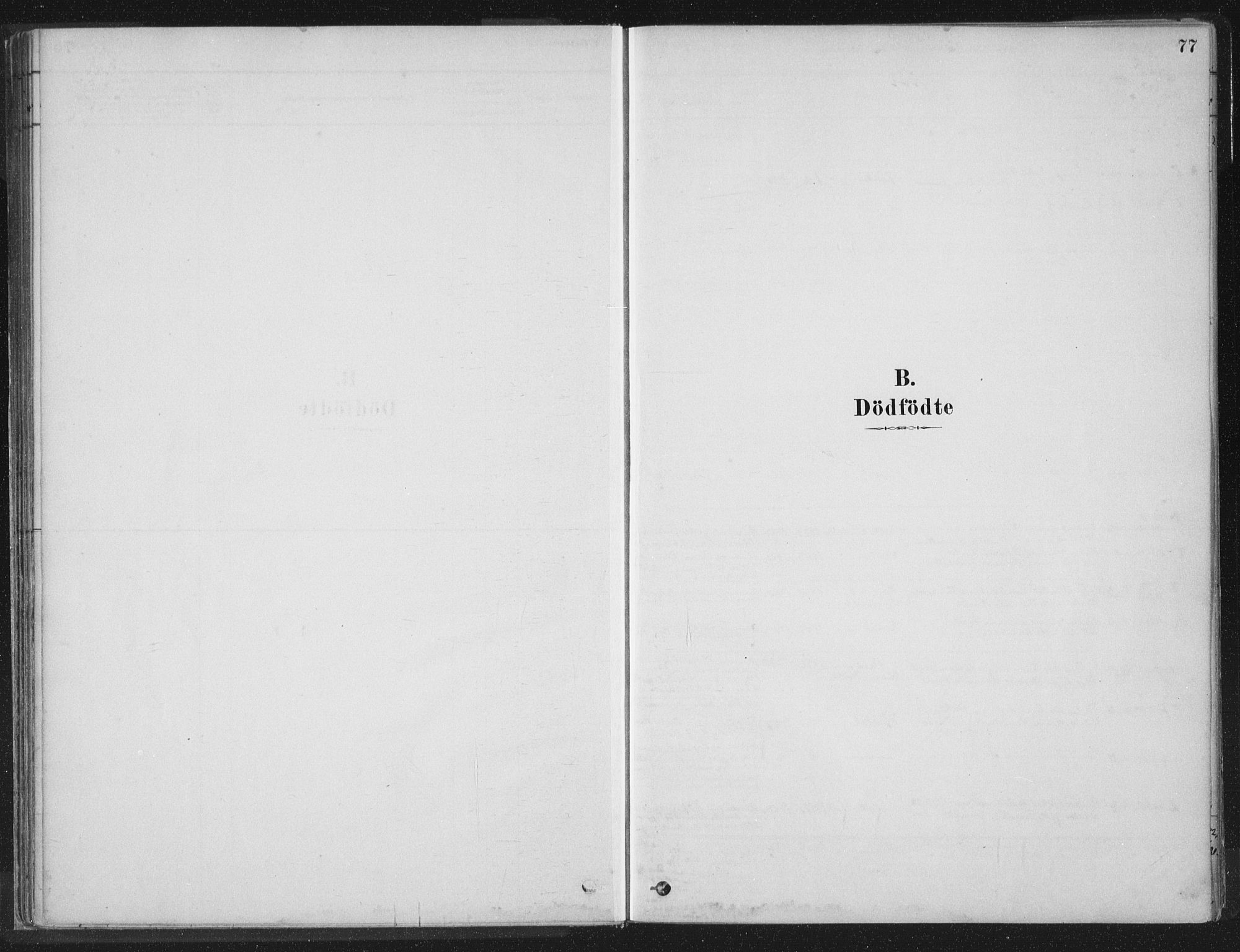 SAT, Ministerialprotokoller, klokkerbøker og fødselsregistre - Nord-Trøndelag, 788/L0697: Ministerialbok nr. 788A04, 1878-1902, s. 77