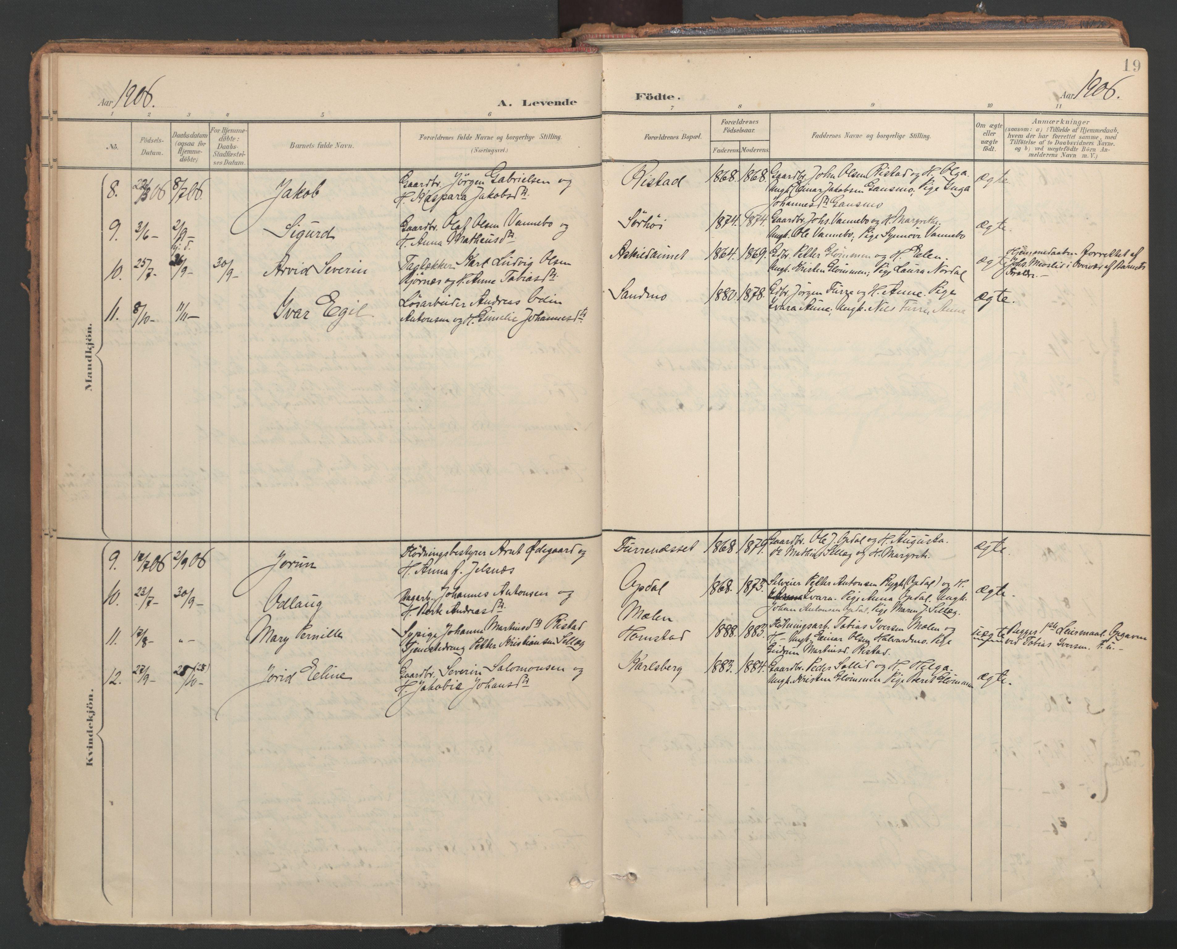SAT, Ministerialprotokoller, klokkerbøker og fødselsregistre - Nord-Trøndelag, 766/L0564: Ministerialbok nr. 767A02, 1900-1932, s. 19