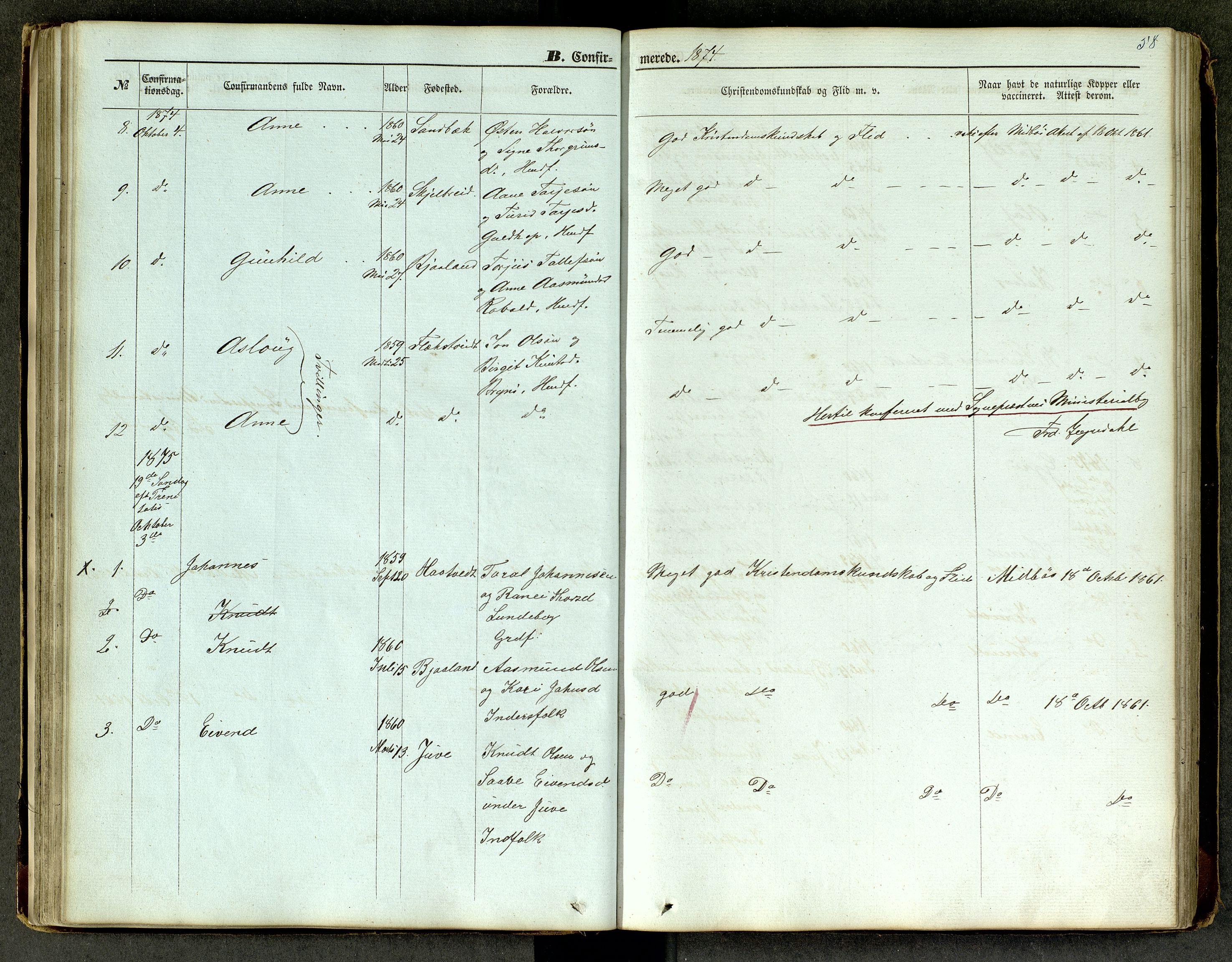 SAKO, Lårdal kirkebøker, G/Ga/L0002: Klokkerbok nr. I 2, 1861-1890, s. 58