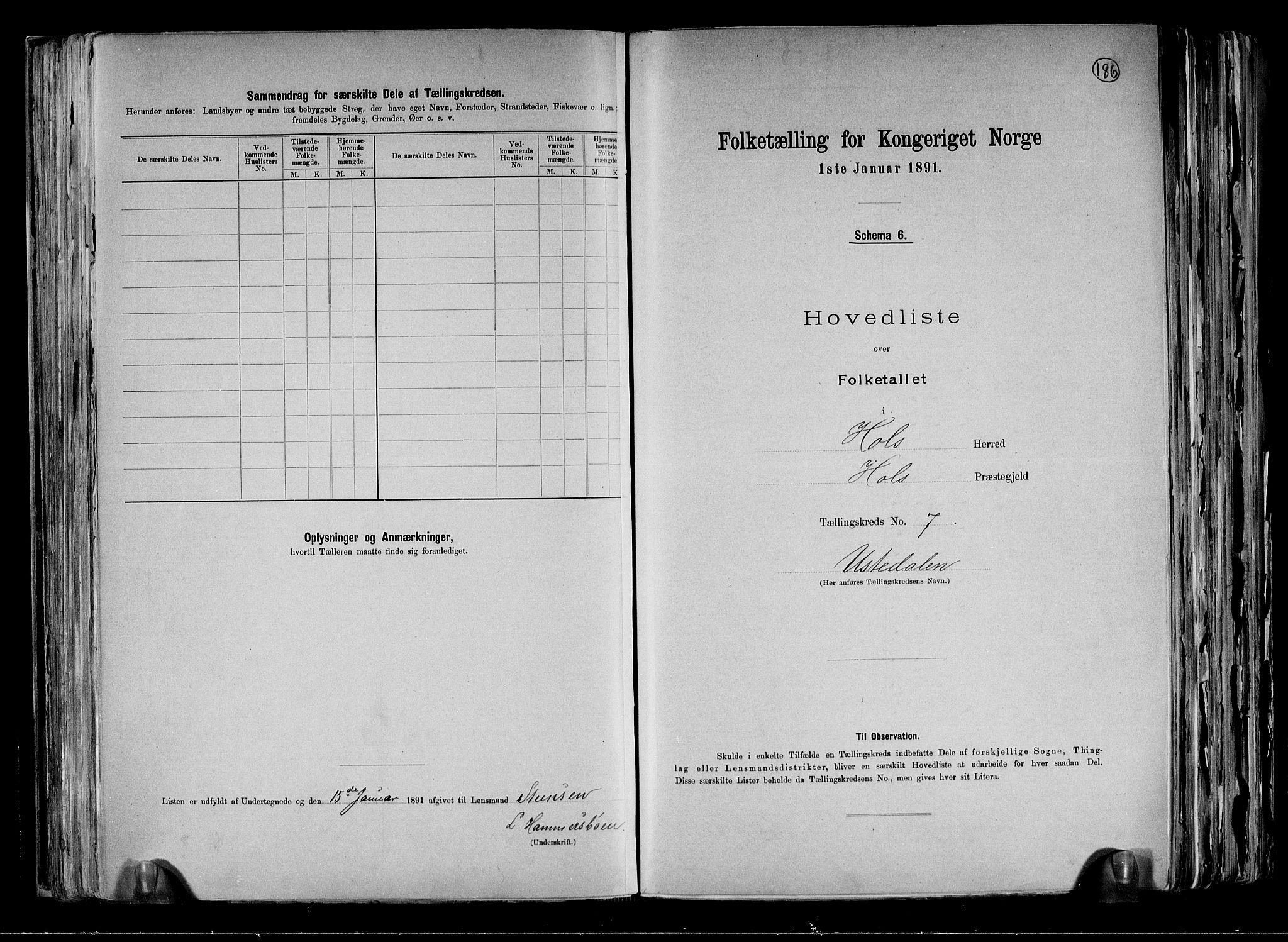 RA, Folketelling 1891 for 0620 Hol herred, 1891, s. 19