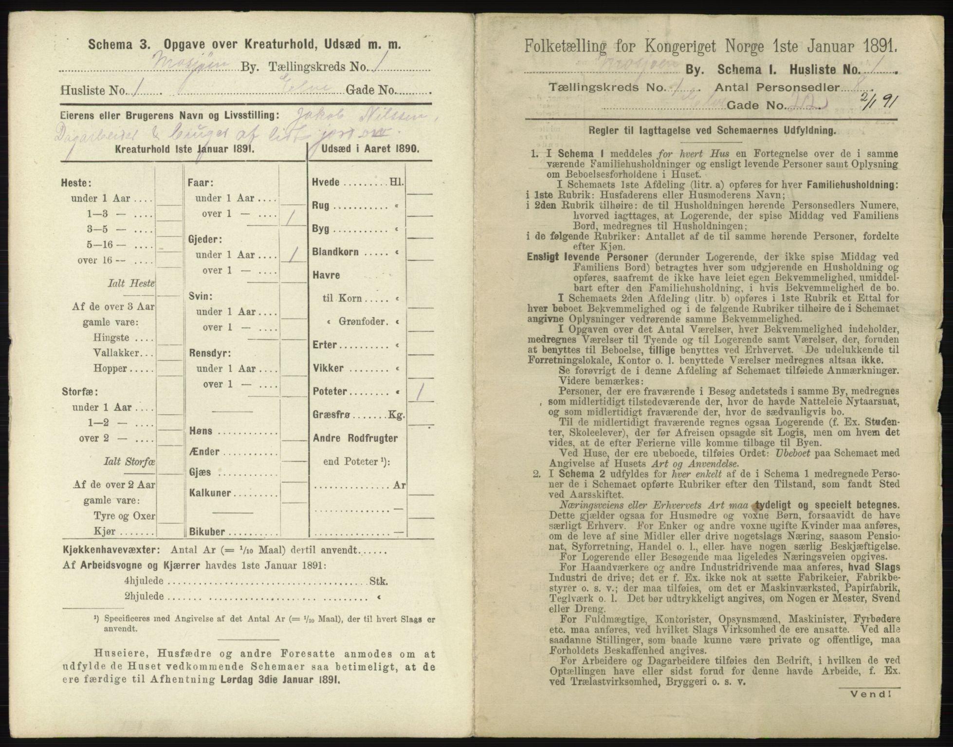RA, Folketelling 1891 for 1802 Mosjøen ladested, 1891, s. 11