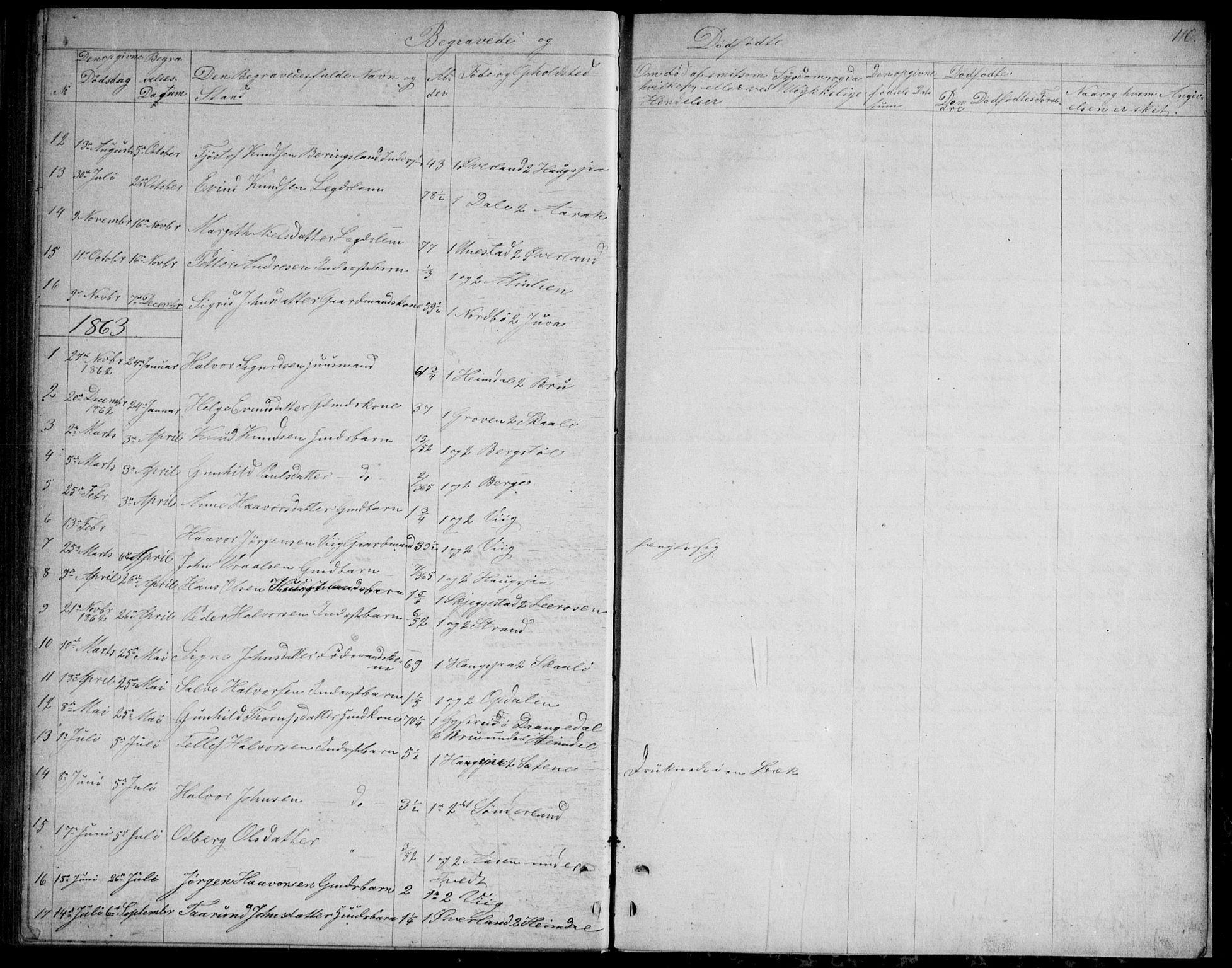 SAKO, Nissedal kirkebøker, G/Gb/L0002: Klokkerbok nr. II 2, 1863-1892, s. 110