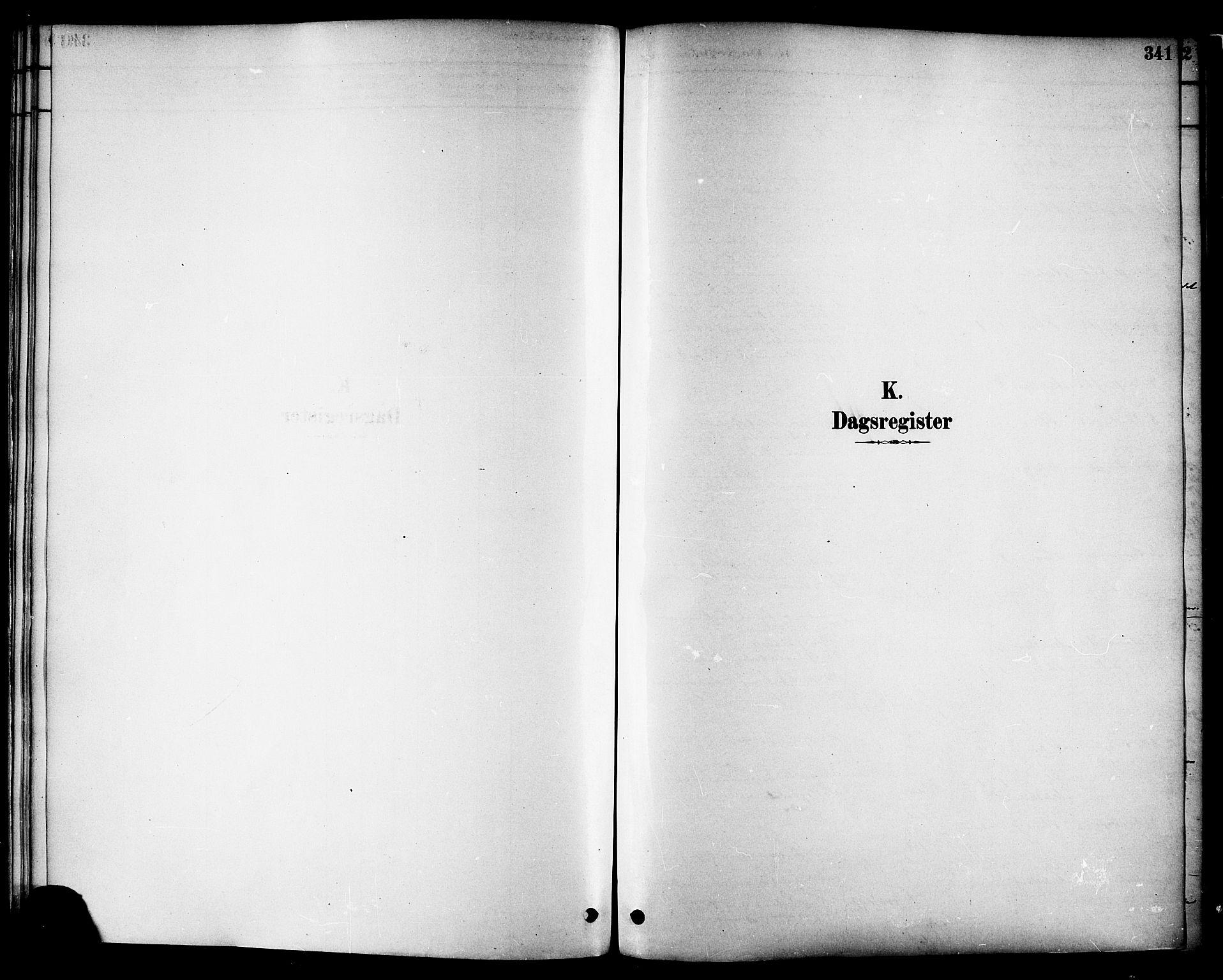 SAT, Ministerialprotokoller, klokkerbøker og fødselsregistre - Nord-Trøndelag, 717/L0159: Ministerialbok nr. 717A09, 1878-1898, s. 341