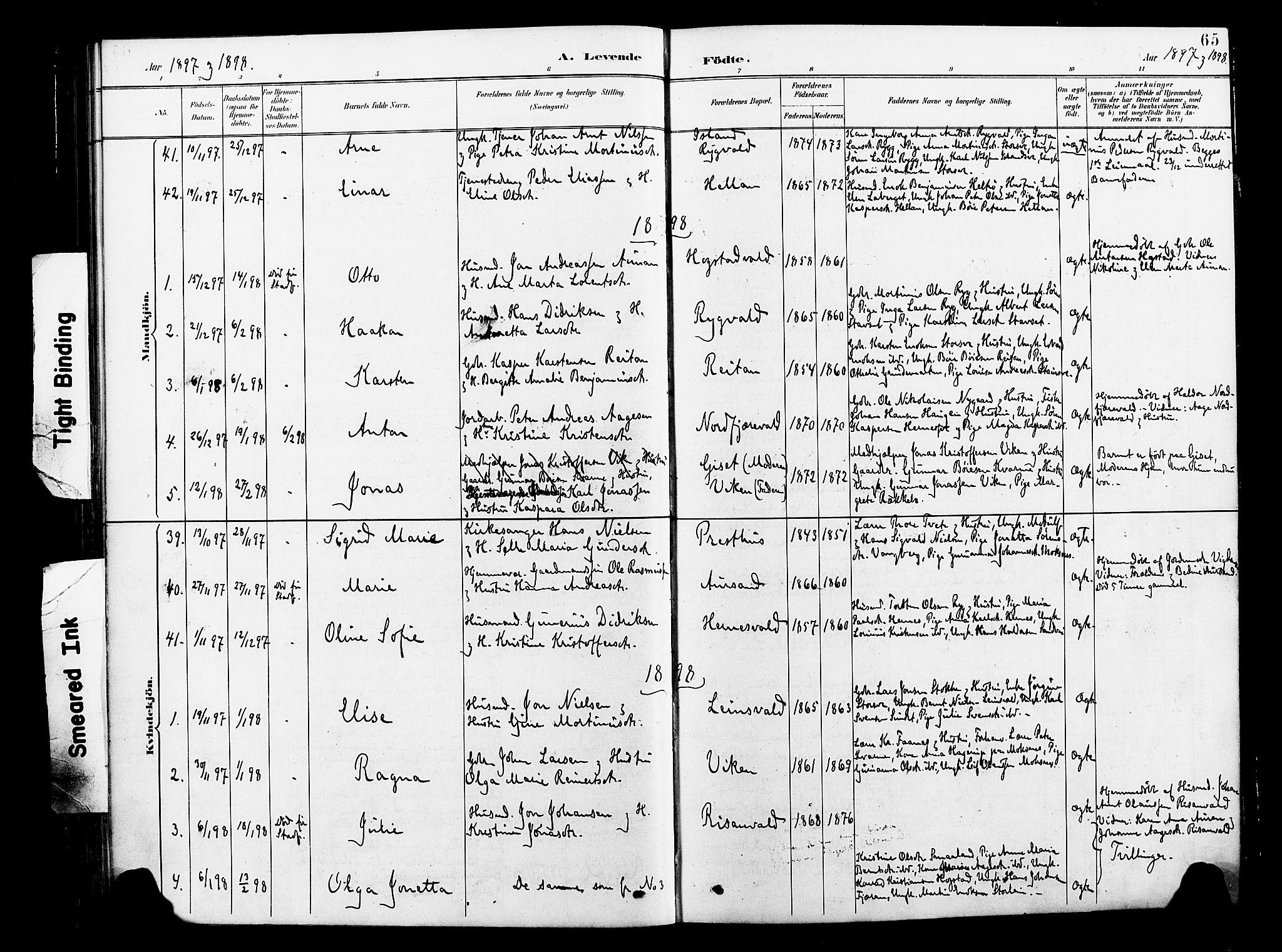 SAT, Ministerialprotokoller, klokkerbøker og fødselsregistre - Nord-Trøndelag, 713/L0121: Ministerialbok nr. 713A10, 1888-1898, s. 65