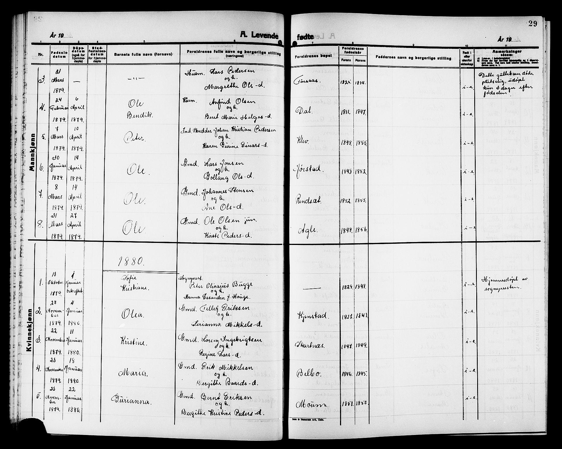 SAT, Ministerialprotokoller, klokkerbøker og fødselsregistre - Nord-Trøndelag, 749/L0486: Ministerialbok nr. 749D02, 1873-1887, s. 29