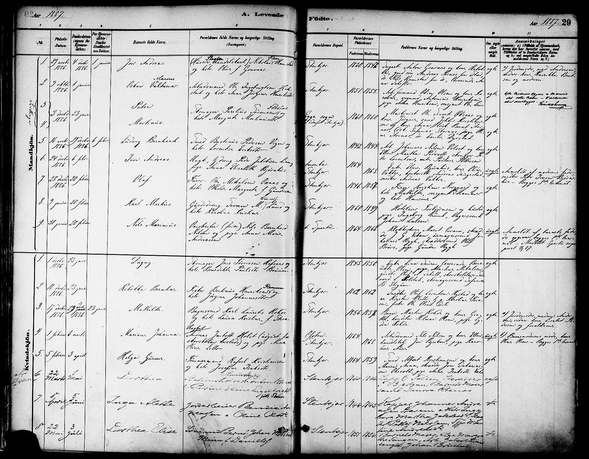 SAT, Ministerialprotokoller, klokkerbøker og fødselsregistre - Nord-Trøndelag, 739/L0371: Ministerialbok nr. 739A03, 1881-1895, s. 29
