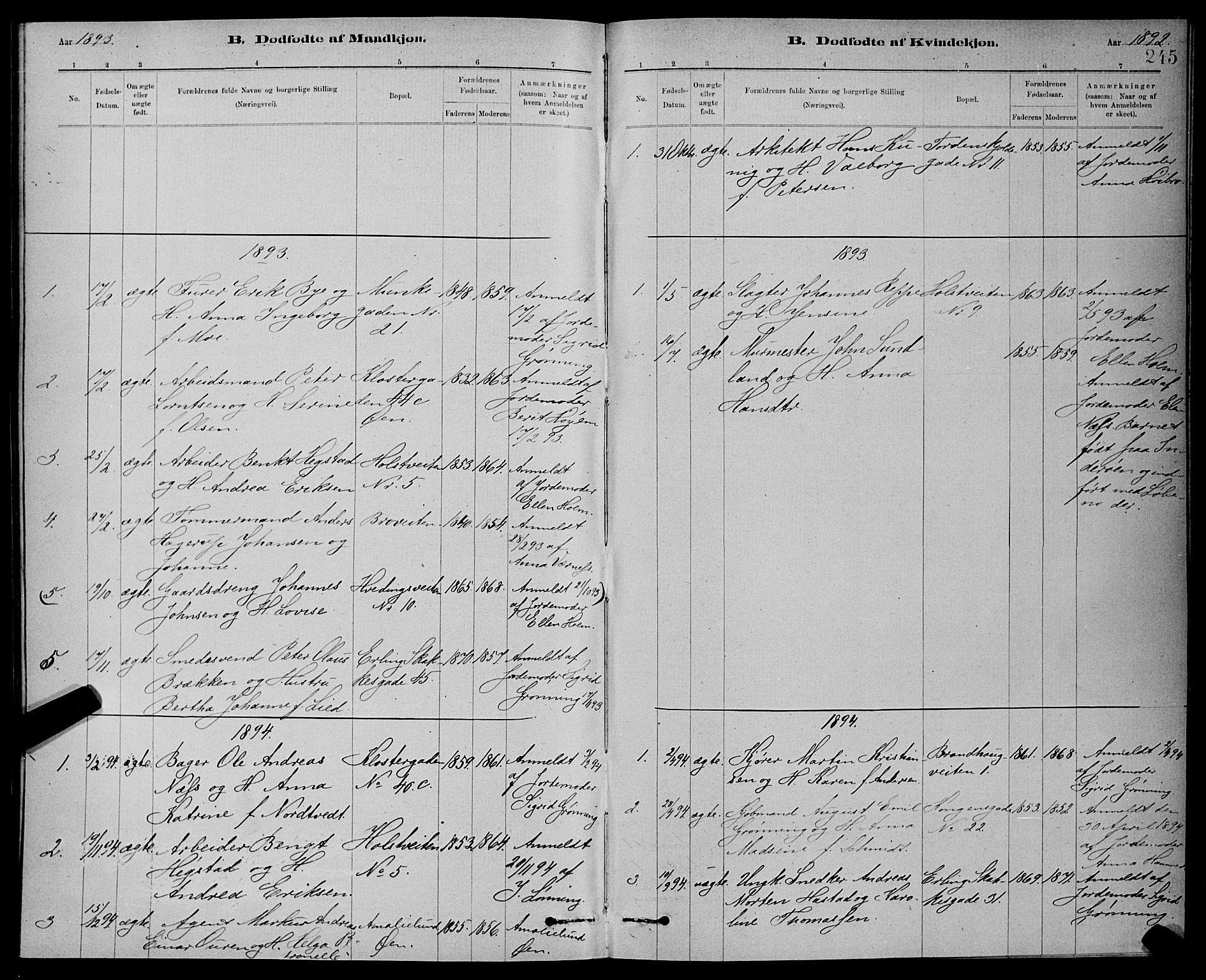 SAT, Ministerialprotokoller, klokkerbøker og fødselsregistre - Sør-Trøndelag, 601/L0092: Klokkerbok nr. 601C10, 1884-1897, s. 245