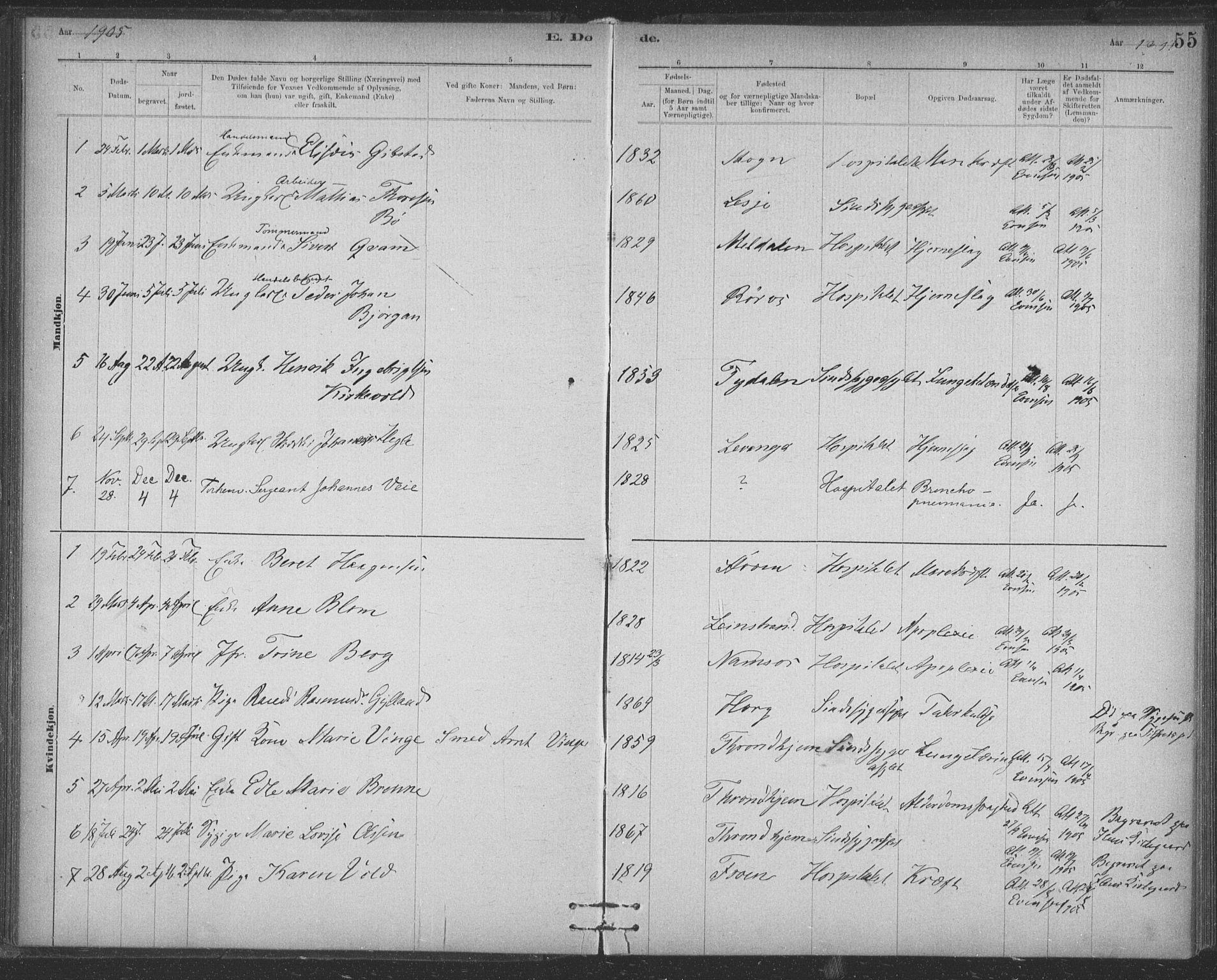 SAT, Ministerialprotokoller, klokkerbøker og fødselsregistre - Sør-Trøndelag, 623/L0470: Ministerialbok nr. 623A04, 1884-1938, s. 55