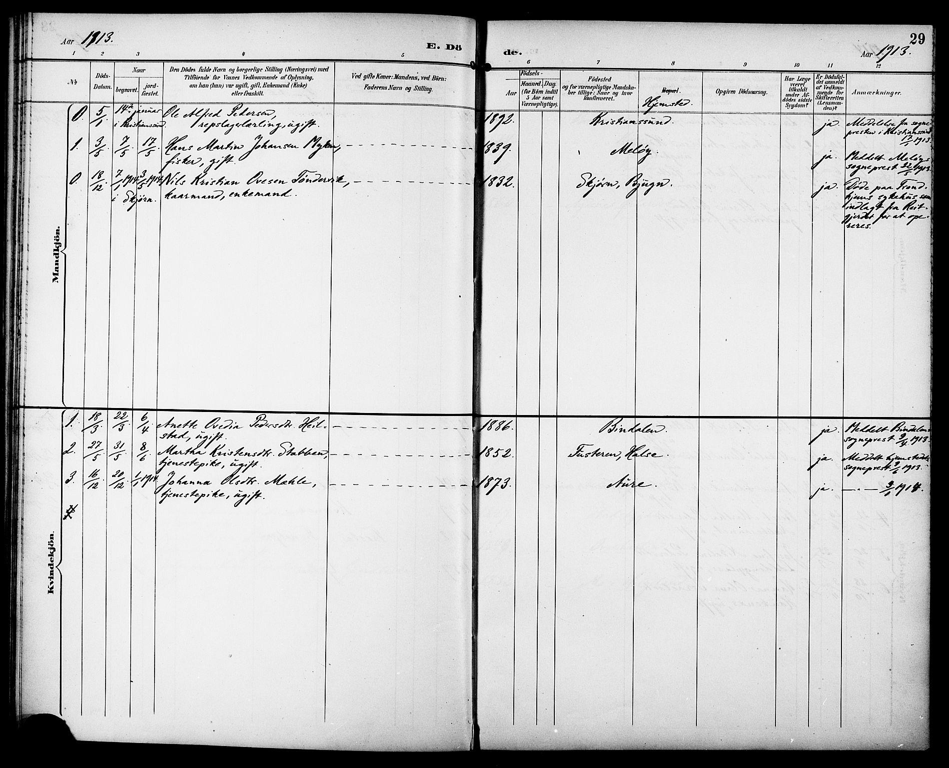 SAT, Ministerialprotokoller, klokkerbøker og fødselsregistre - Sør-Trøndelag, 629/L0486: Ministerialbok nr. 629A02, 1894-1919, s. 29