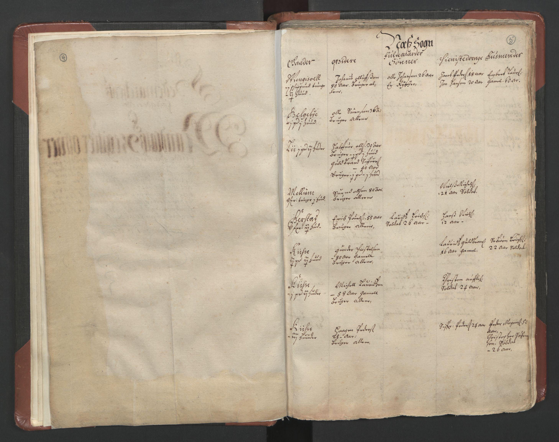 RA, Fogdenes og sorenskrivernes manntall 1664-1666, nr. 3: Hedmark fogderi og Solør, Østerdal og Odal fogderi, 1664, s. 4-5