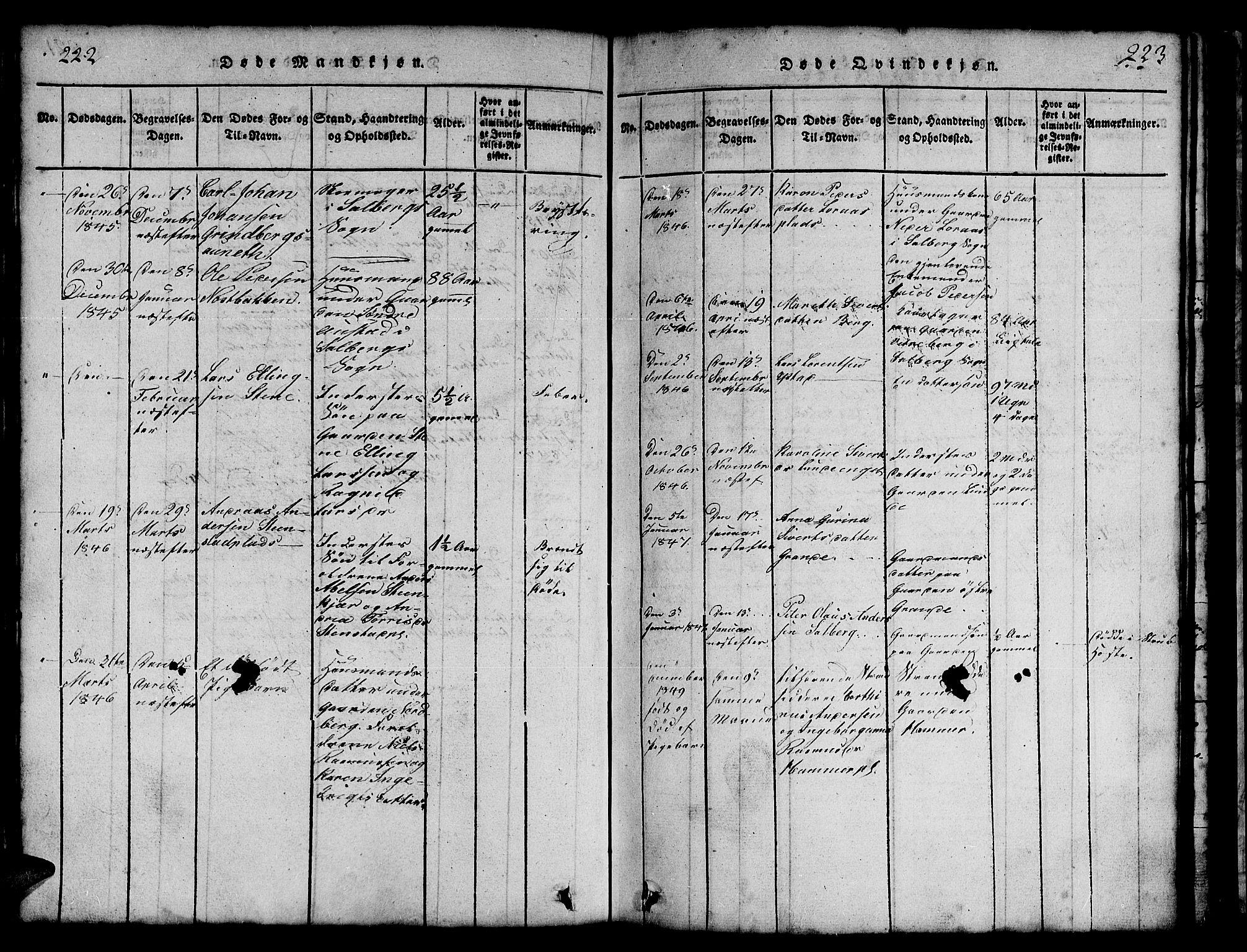 SAT, Ministerialprotokoller, klokkerbøker og fødselsregistre - Nord-Trøndelag, 731/L0310: Klokkerbok nr. 731C01, 1816-1874, s. 222-223