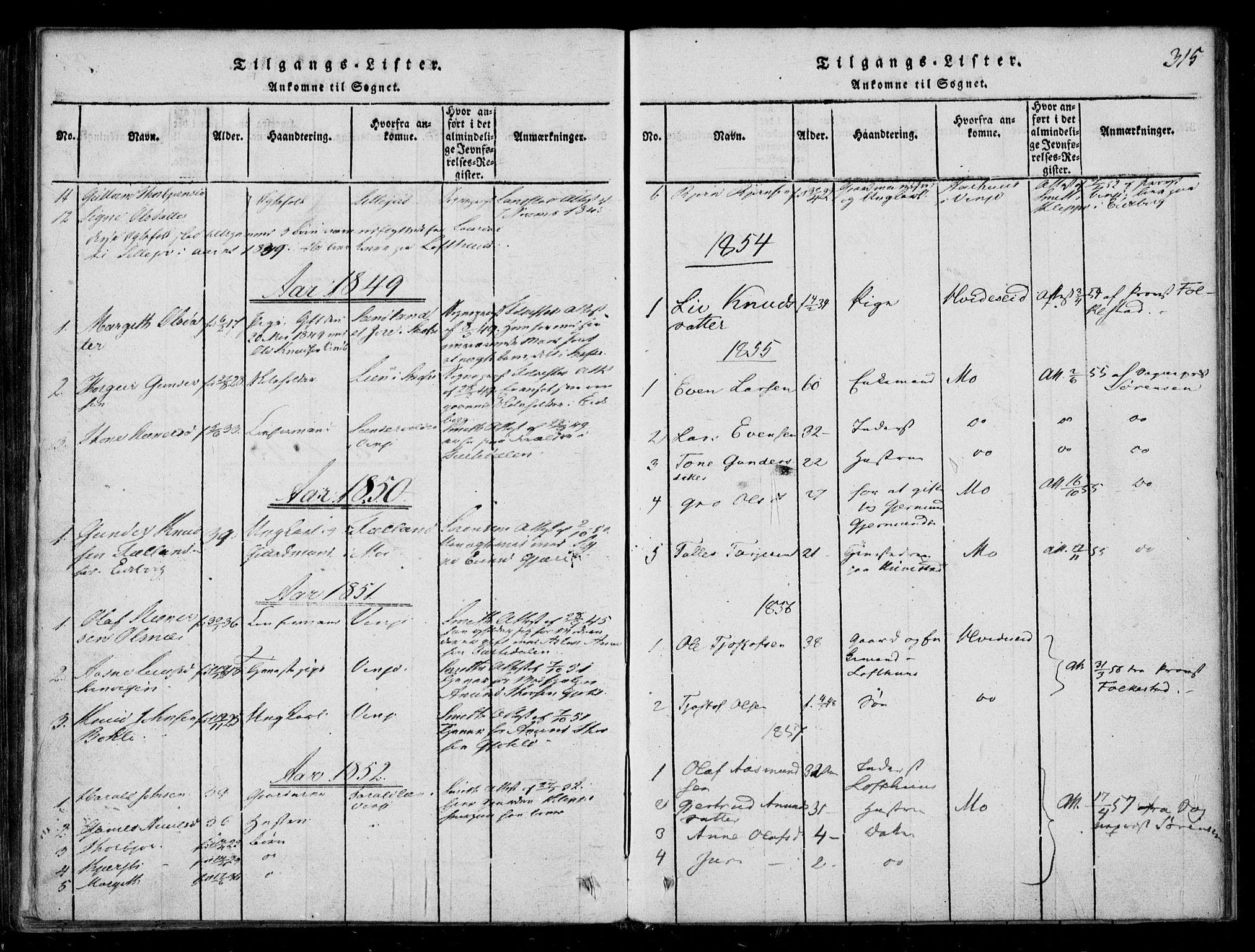 SAKO, Lårdal kirkebøker, F/Fb/L0001: Ministerialbok nr. II 1, 1815-1860, s. 315