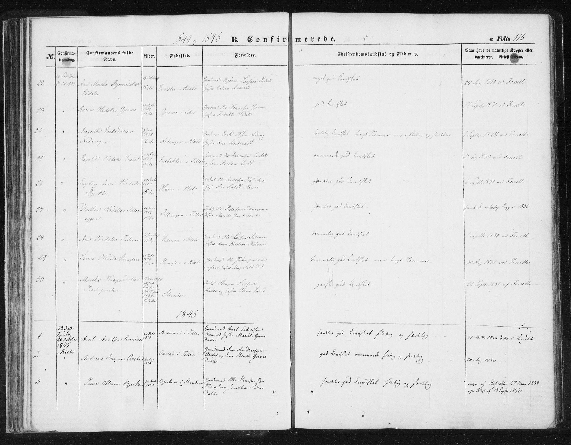 SAT, Ministerialprotokoller, klokkerbøker og fødselsregistre - Sør-Trøndelag, 618/L0441: Ministerialbok nr. 618A05, 1843-1862, s. 116