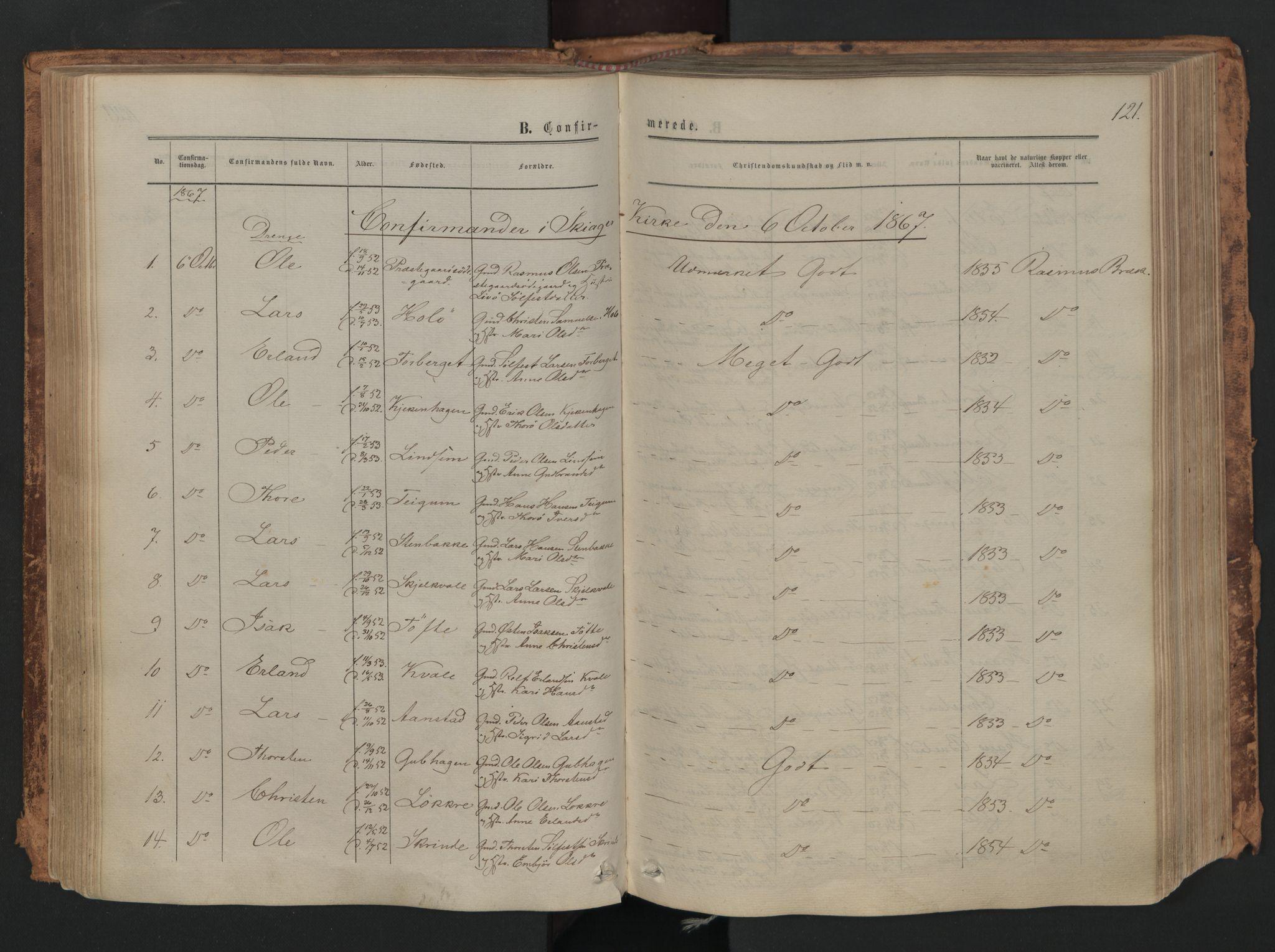 SAH, Skjåk prestekontor, Ministerialbok nr. 1, 1863-1879, s. 121