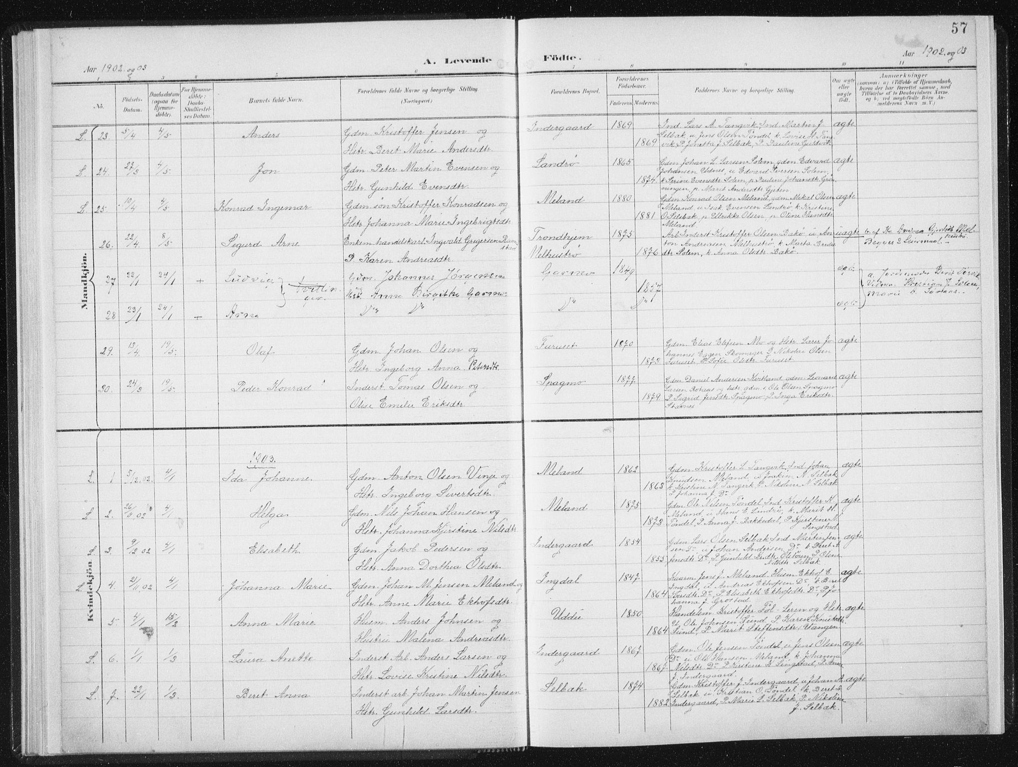 SAT, Ministerialprotokoller, klokkerbøker og fødselsregistre - Sør-Trøndelag, 647/L0635: Ministerialbok nr. 647A02, 1896-1911, s. 57