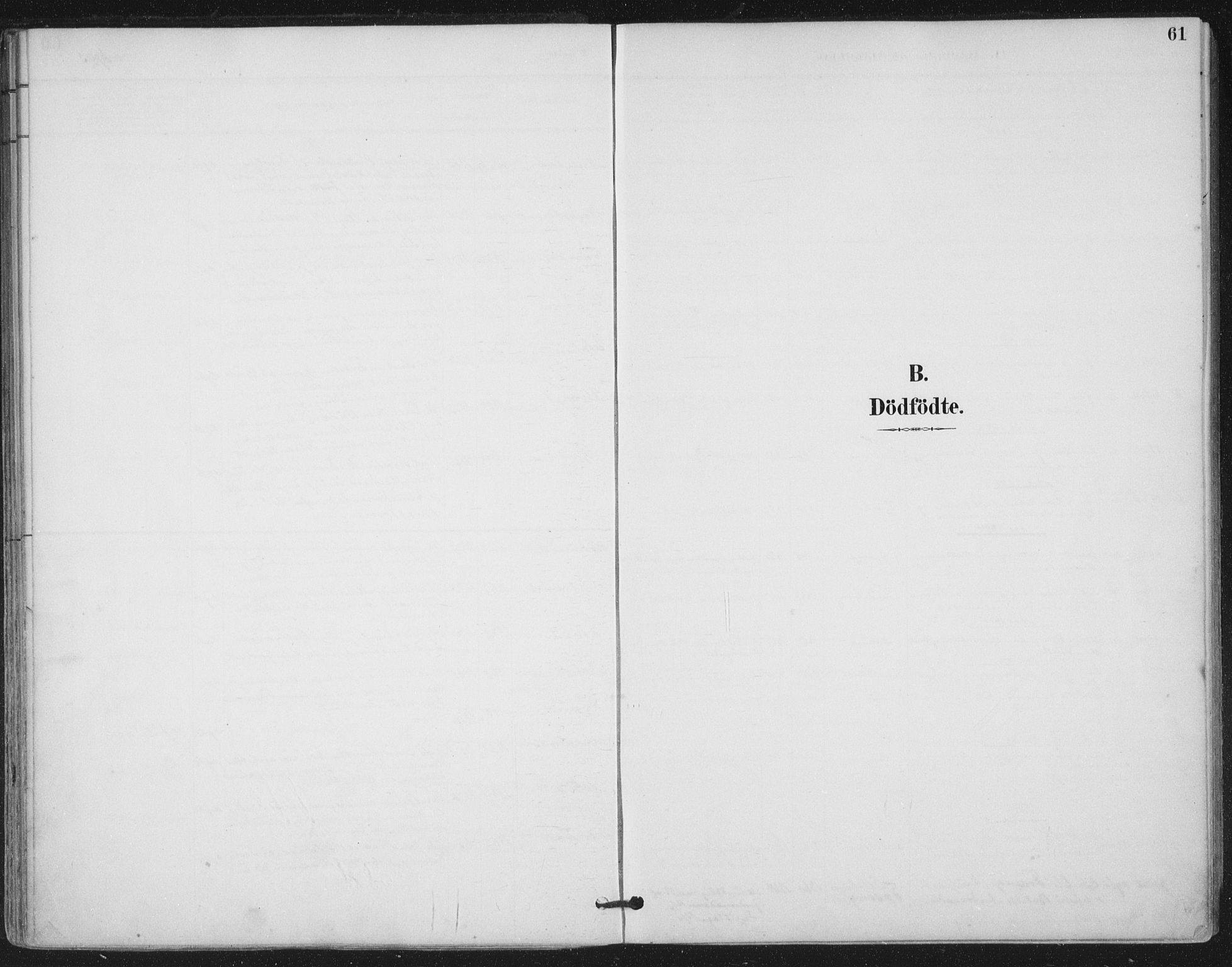 SAT, Ministerialprotokoller, klokkerbøker og fødselsregistre - Nord-Trøndelag, 780/L0644: Ministerialbok nr. 780A08, 1886-1903, s. 61