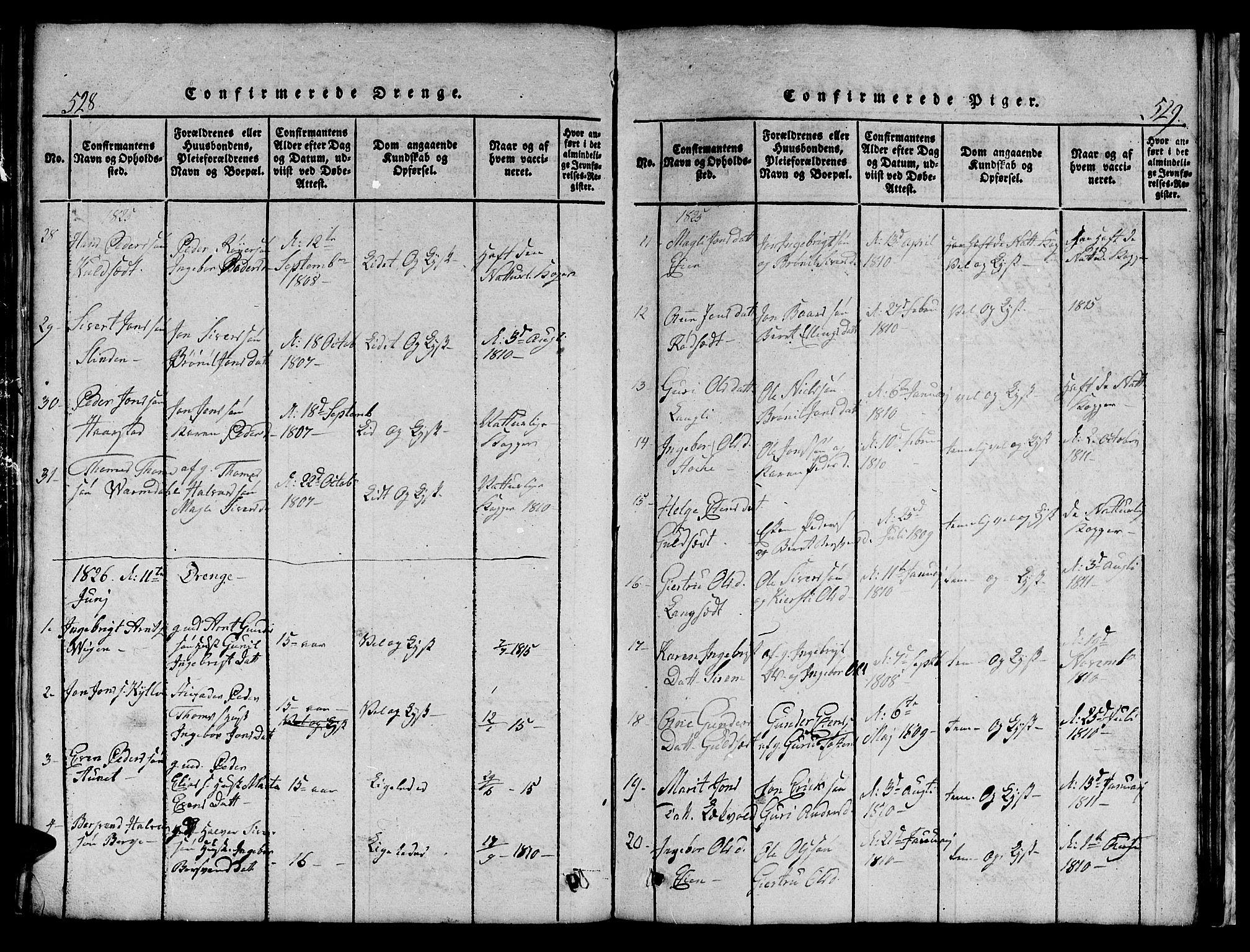 SAT, Ministerialprotokoller, klokkerbøker og fødselsregistre - Sør-Trøndelag, 695/L1152: Klokkerbok nr. 695C03, 1816-1831, s. 528-529