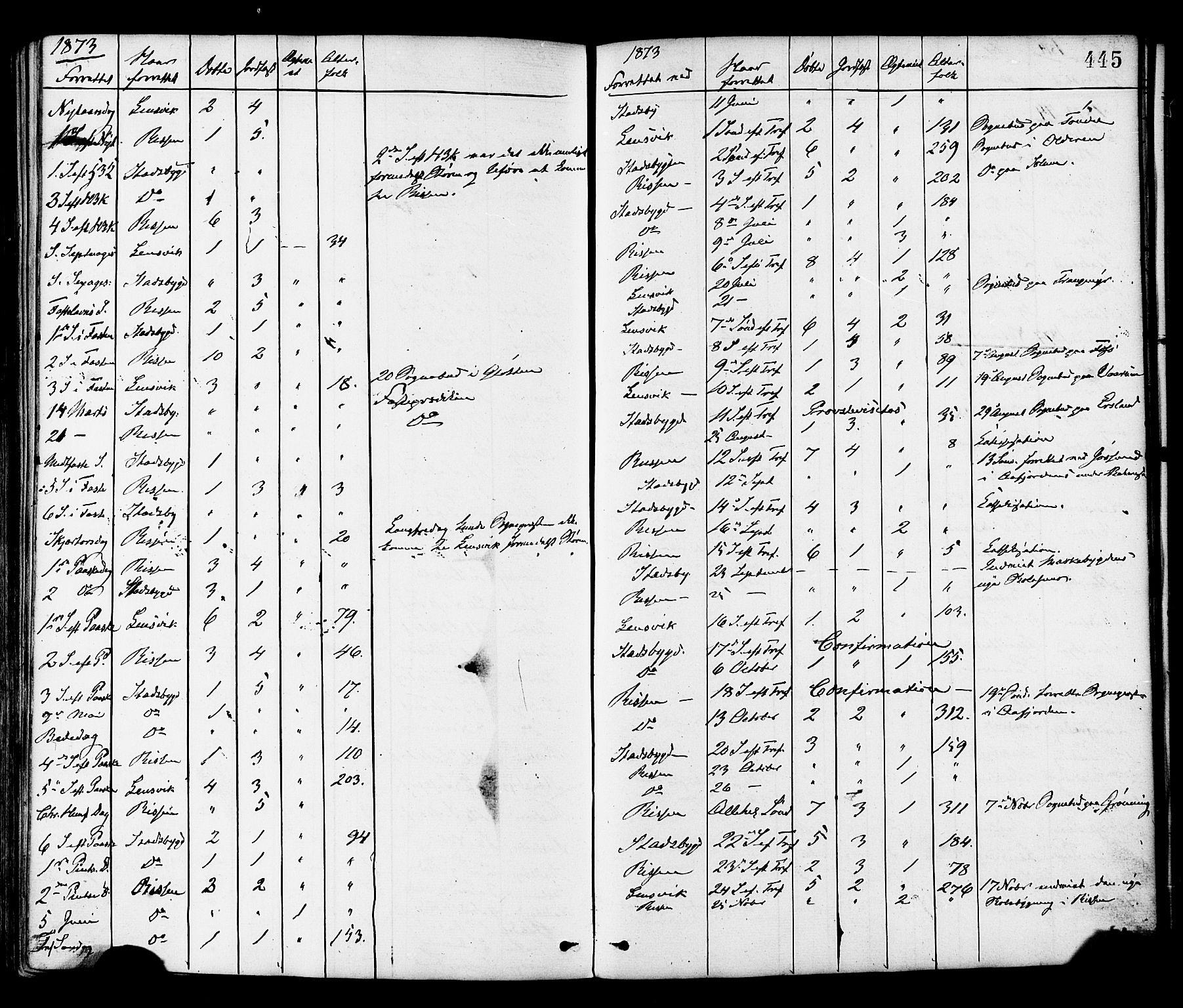 SAT, Ministerialprotokoller, klokkerbøker og fødselsregistre - Sør-Trøndelag, 646/L0613: Ministerialbok nr. 646A11, 1870-1884, s. 445