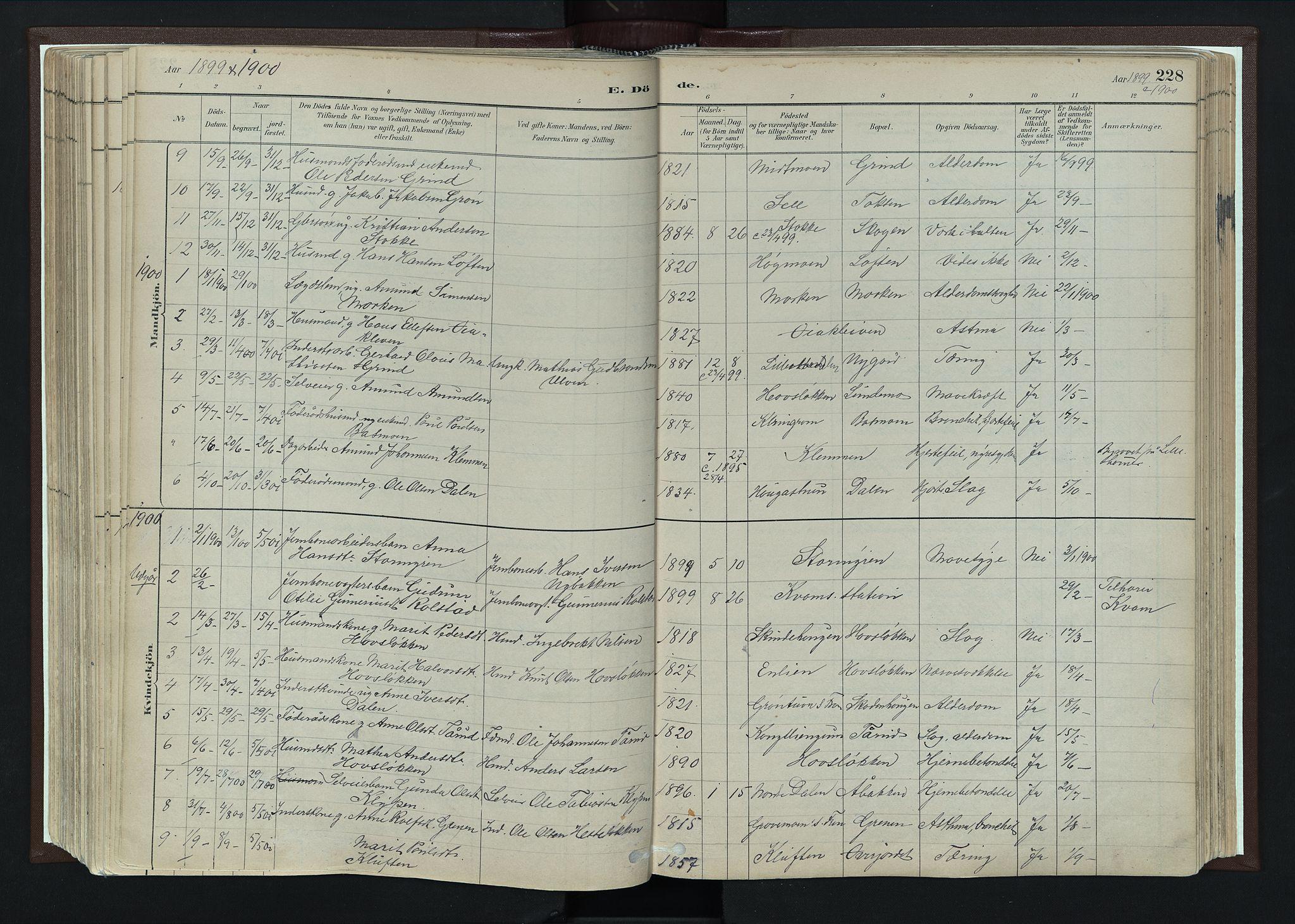 SAH, Nord-Fron prestekontor, Ministerialbok nr. 4, 1884-1914, s. 228