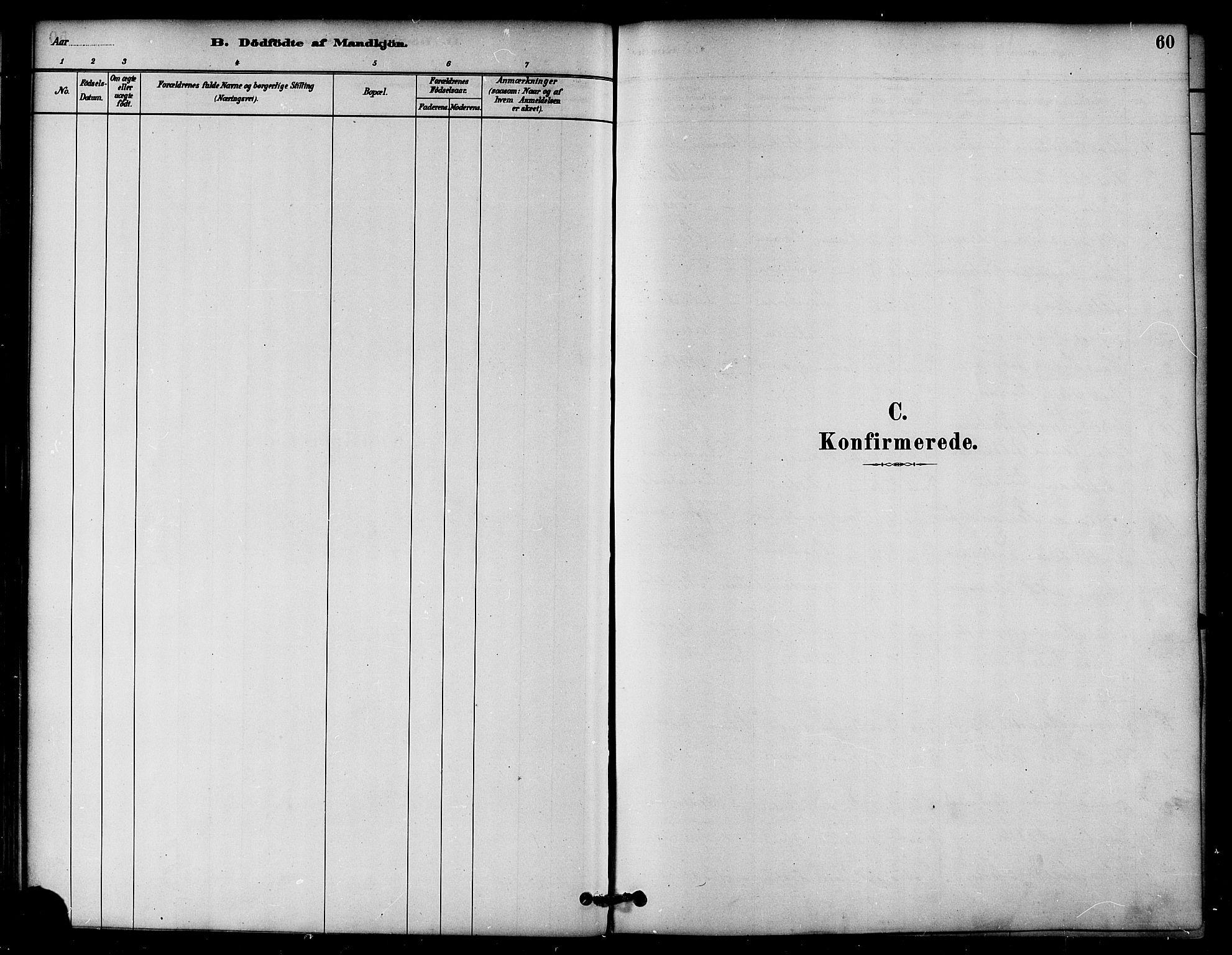 SAT, Ministerialprotokoller, klokkerbøker og fødselsregistre - Nord-Trøndelag, 764/L0555: Ministerialbok nr. 764A10, 1881-1896, s. 60