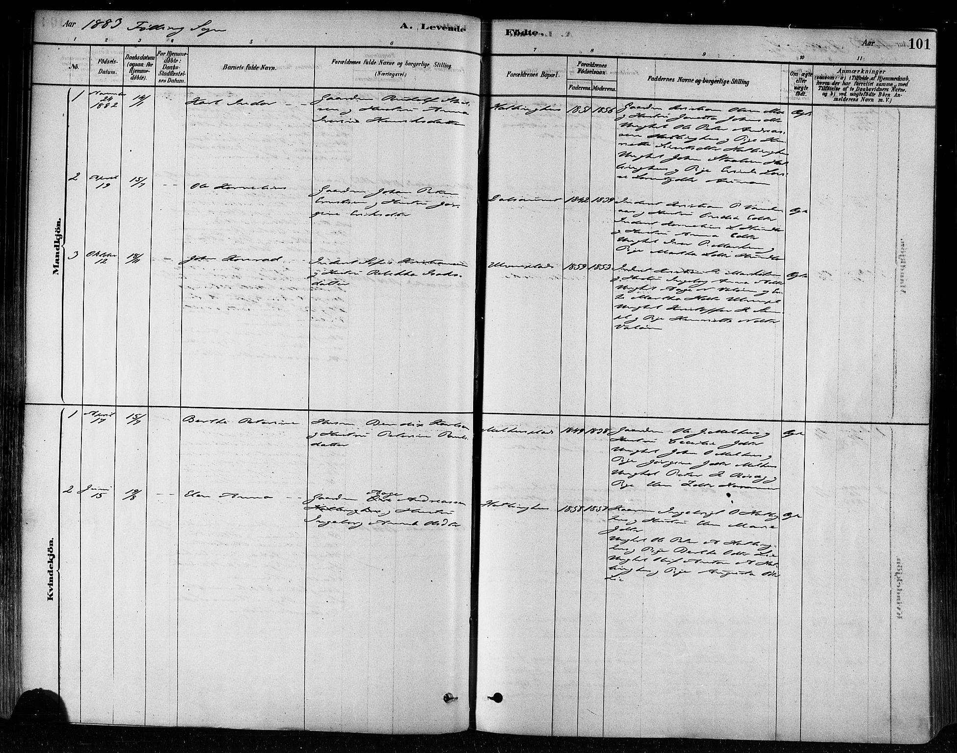 SAT, Ministerialprotokoller, klokkerbøker og fødselsregistre - Nord-Trøndelag, 746/L0449: Ministerialbok nr. 746A07 /3, 1878-1899, s. 101