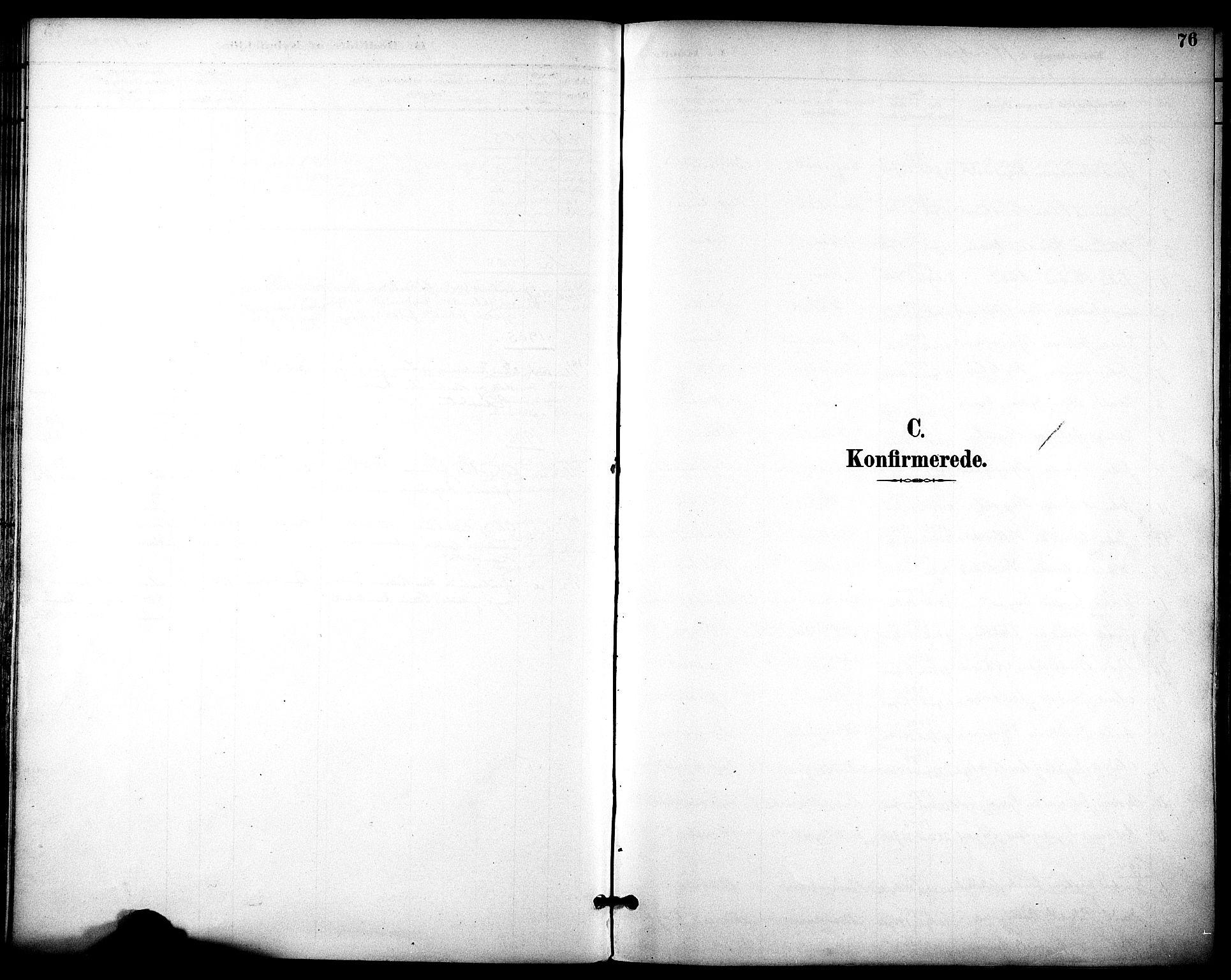 SAT, Ministerialprotokoller, klokkerbøker og fødselsregistre - Sør-Trøndelag, 686/L0984: Ministerialbok nr. 686A02, 1891-1906, s. 76