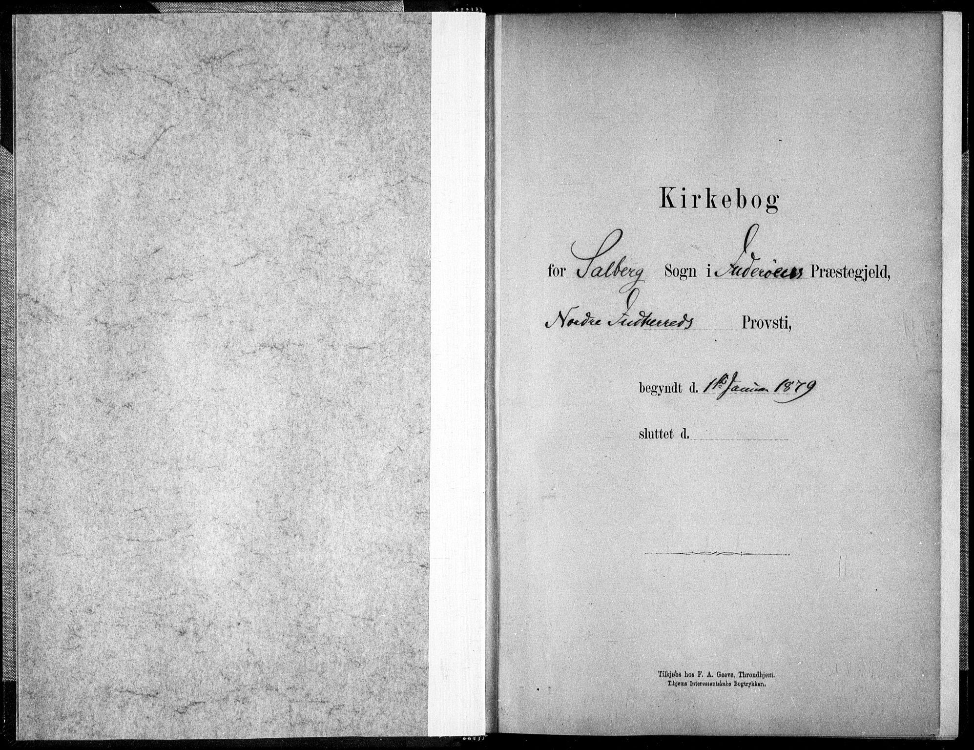 SAT, Ministerialprotokoller, klokkerbøker og fødselsregistre - Nord-Trøndelag, 731/L0309: Ministerialbok nr. 731A01, 1879-1918