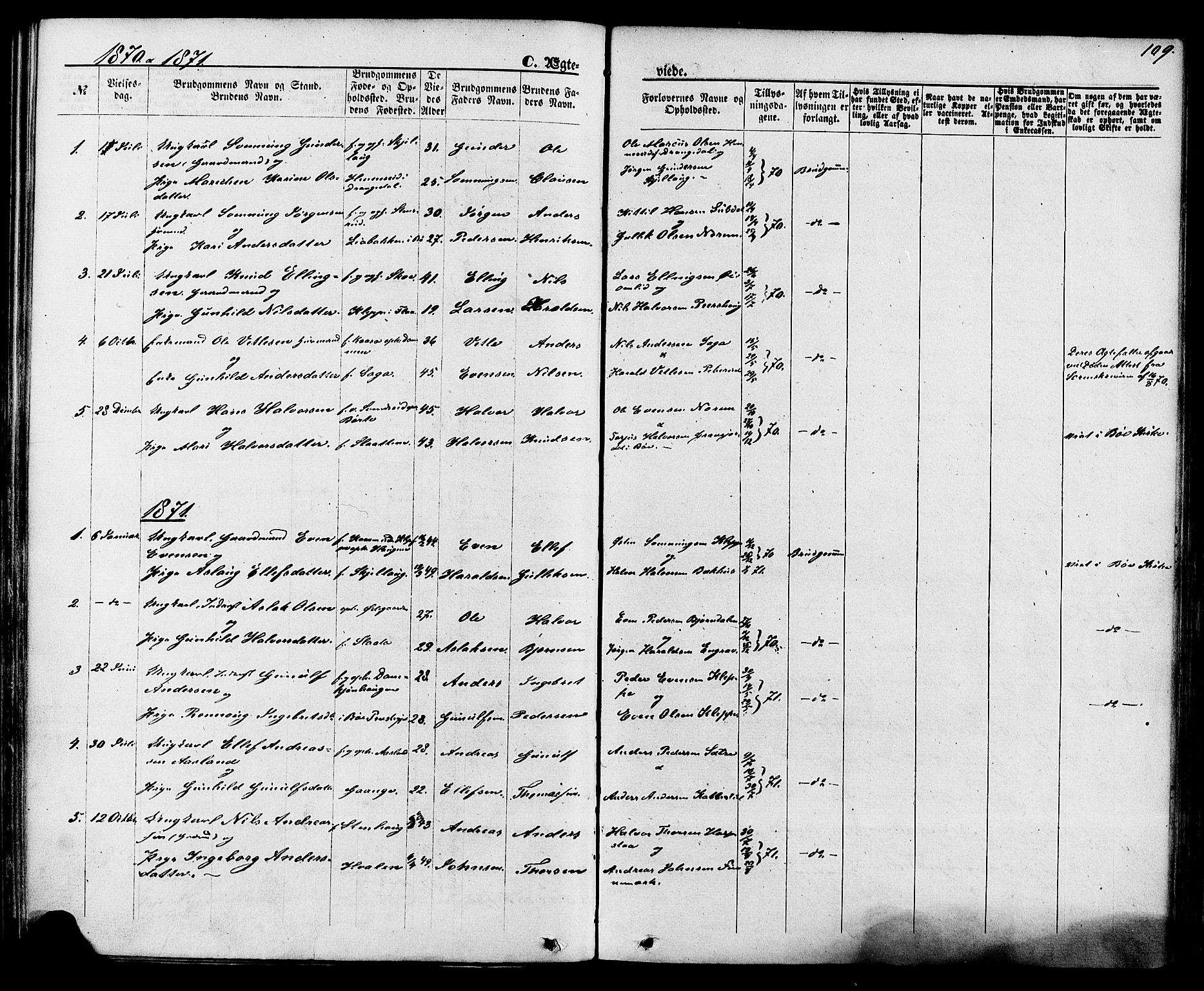 SAKO, Lunde kirkebøker, F/Fa/L0001: Ministerialbok nr. I 1, 1866-1883, s. 109