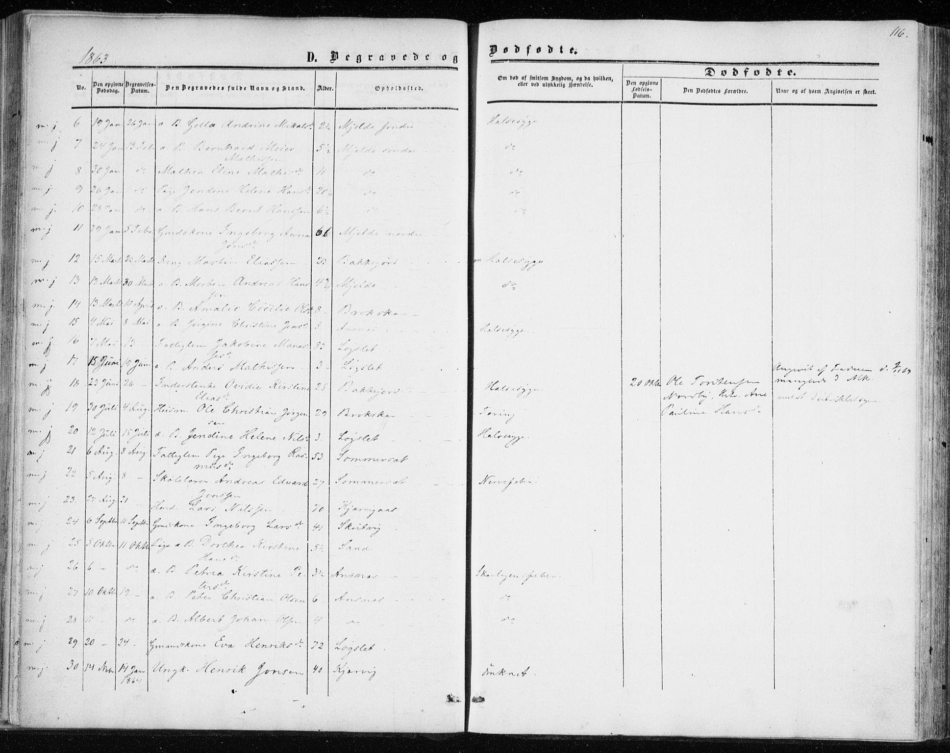 SATØ, Balsfjord sokneprestembete, Ministerialbok nr. 1, 1858-1870, s. 116