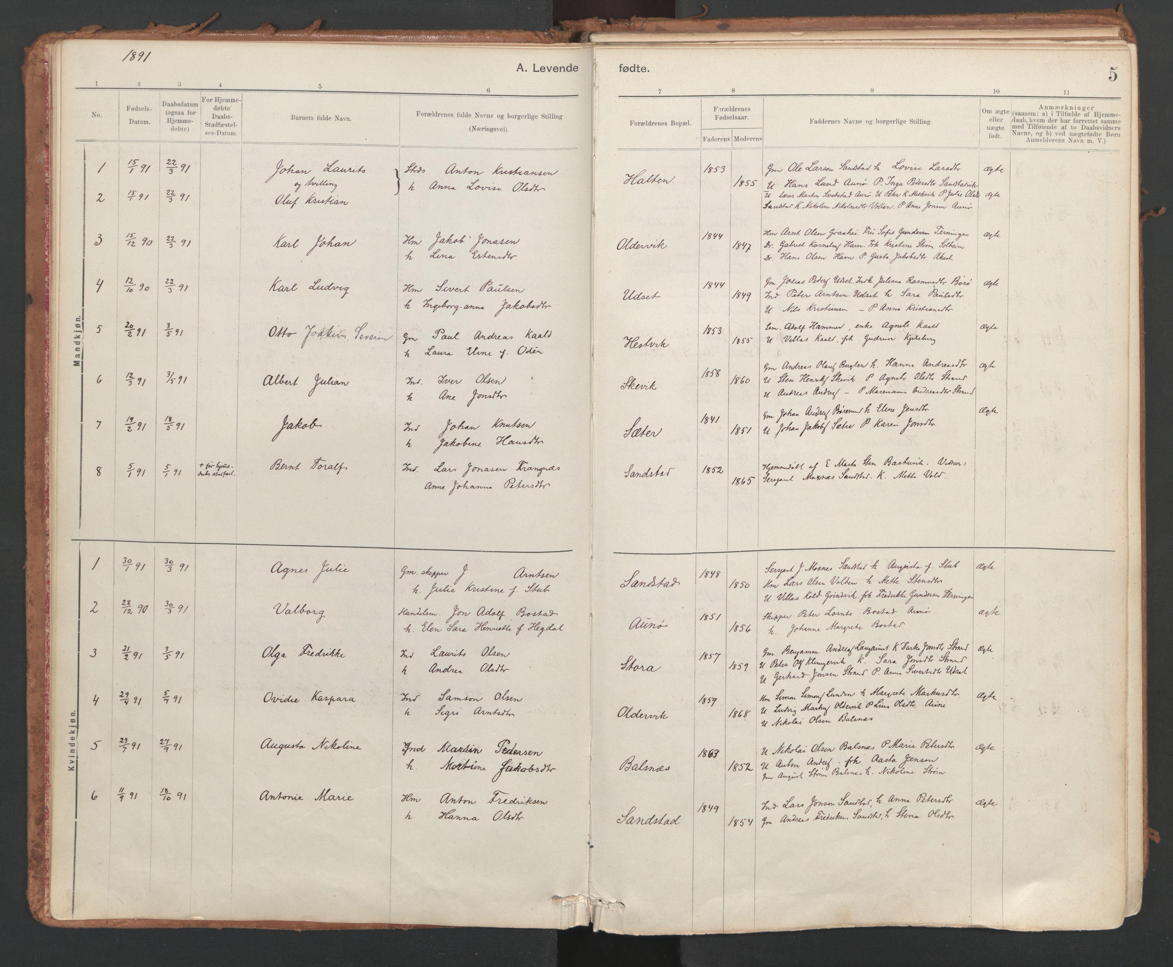 SAT, Ministerialprotokoller, klokkerbøker og fødselsregistre - Sør-Trøndelag, 639/L0572: Ministerialbok nr. 639A01, 1890-1920, s. 5
