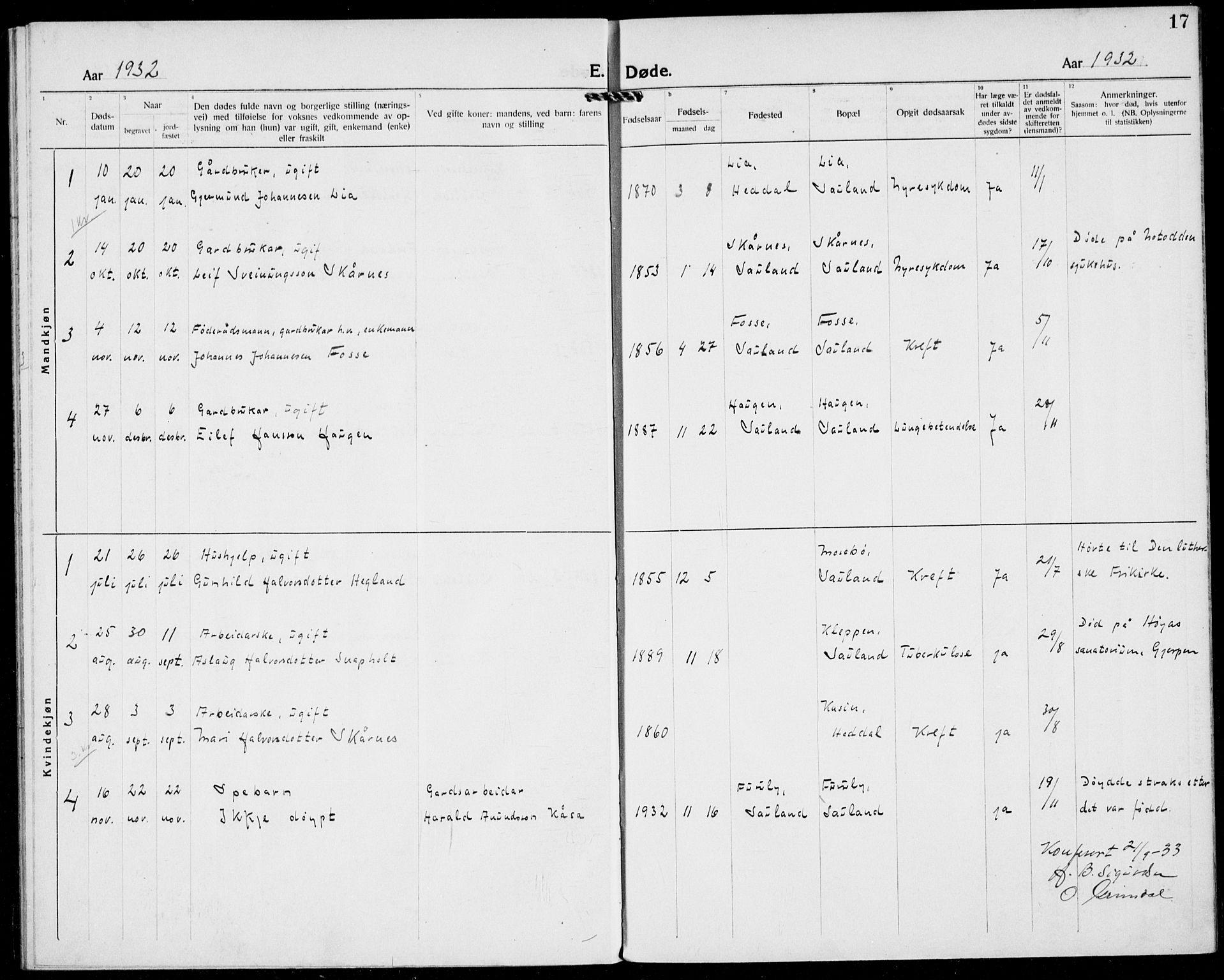SAKO, Hjartdal kirkebøker, F/Fb/L0002: Ministerialbok nr. II 2, 1880-1932, s. 17