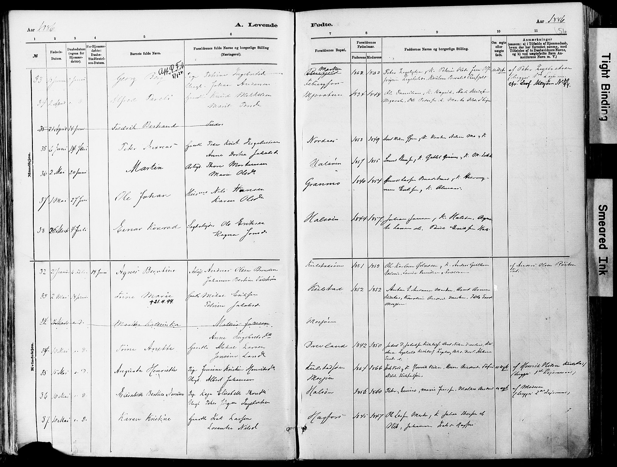 SAT, Ministerialprotokoller, klokkerbøker og fødselsregistre - Nordland, 820/L0295: Ministerialbok nr. 820A16, 1880-1896, s. 56