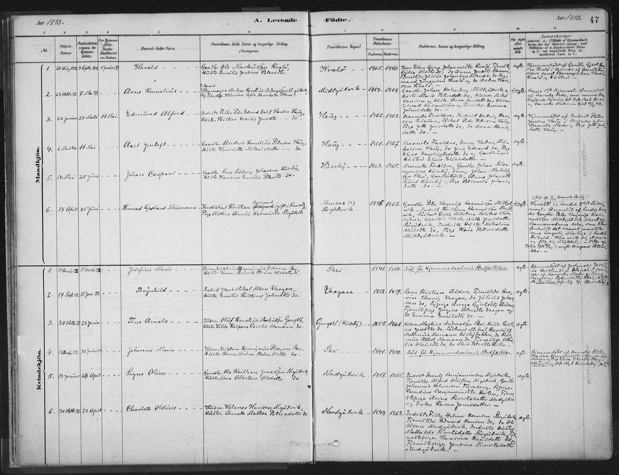 SAT, Ministerialprotokoller, klokkerbøker og fødselsregistre - Nord-Trøndelag, 788/L0697: Ministerialbok nr. 788A04, 1878-1902, s. 47