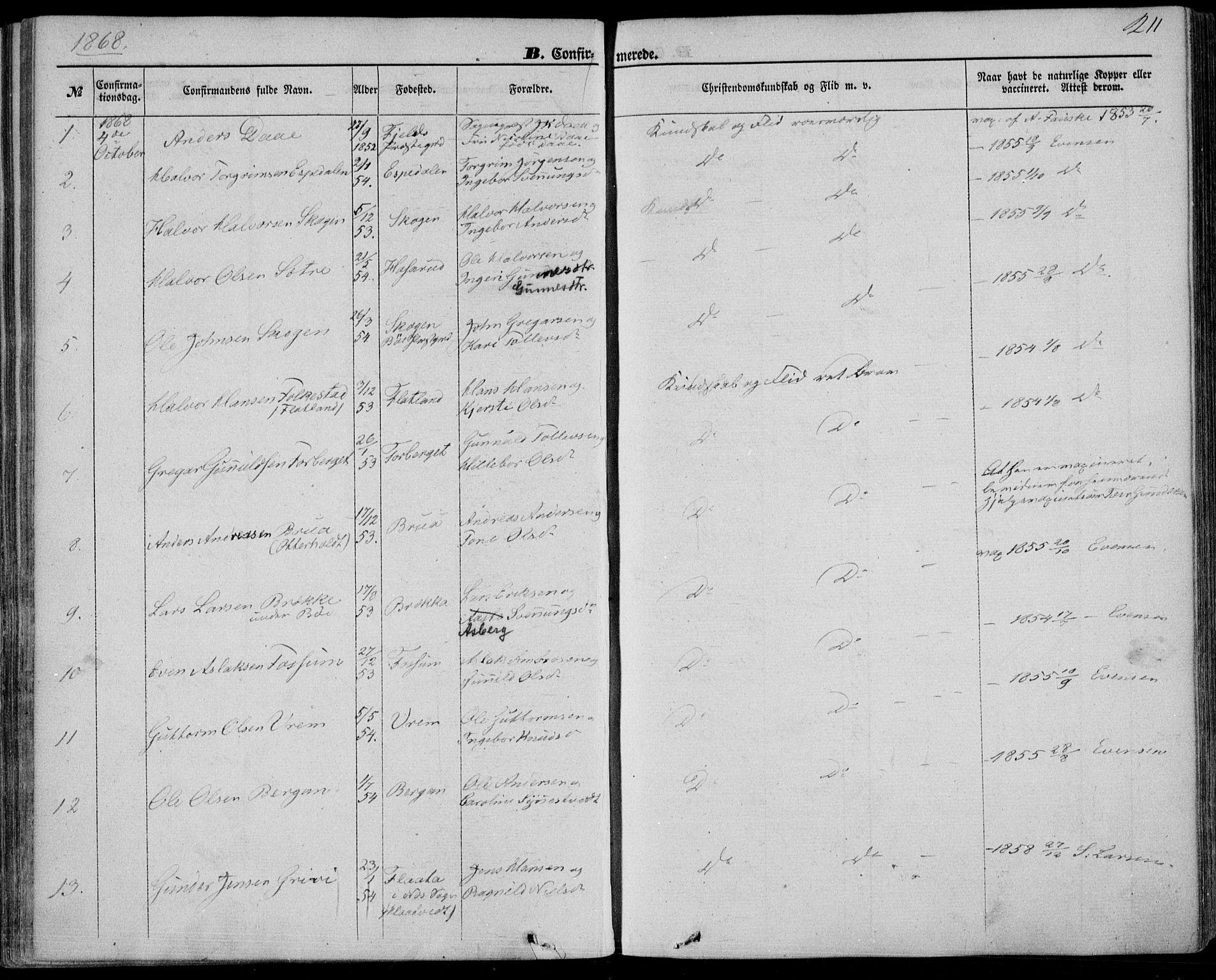 SAKO, Bø kirkebøker, F/Fa/L0009: Ministerialbok nr. 9, 1862-1879, s. 211