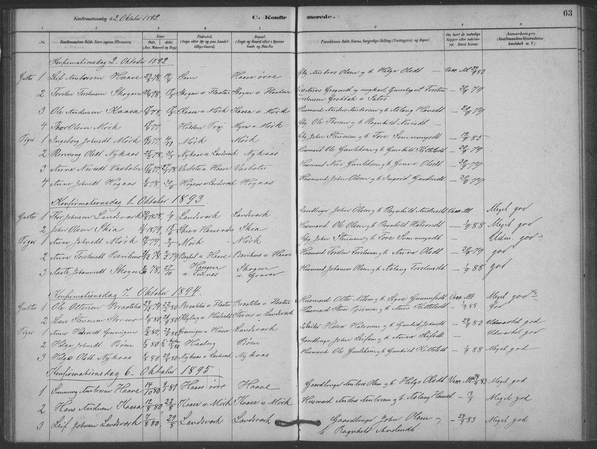 SAKO, Heddal kirkebøker, F/Fb/L0002: Ministerialbok nr. II 2, 1878-1913, s. 63