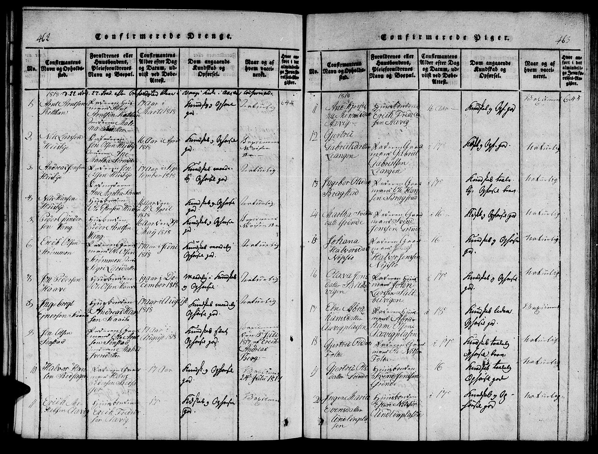SAT, Ministerialprotokoller, klokkerbøker og fødselsregistre - Nord-Trøndelag, 714/L0132: Klokkerbok nr. 714C01, 1817-1824, s. 462-463