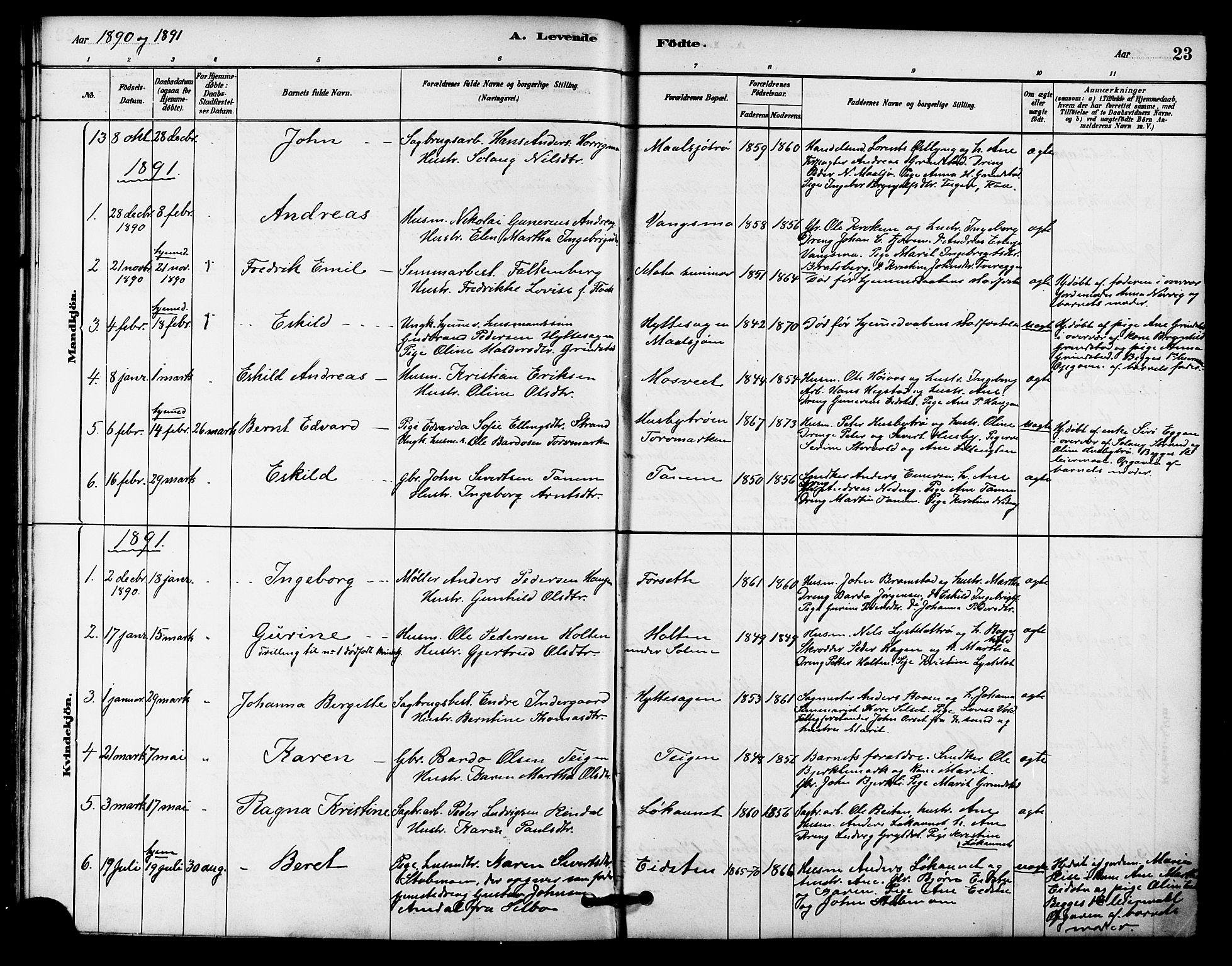 SAT, Ministerialprotokoller, klokkerbøker og fødselsregistre - Sør-Trøndelag, 618/L0444: Ministerialbok nr. 618A07, 1880-1898, s. 23
