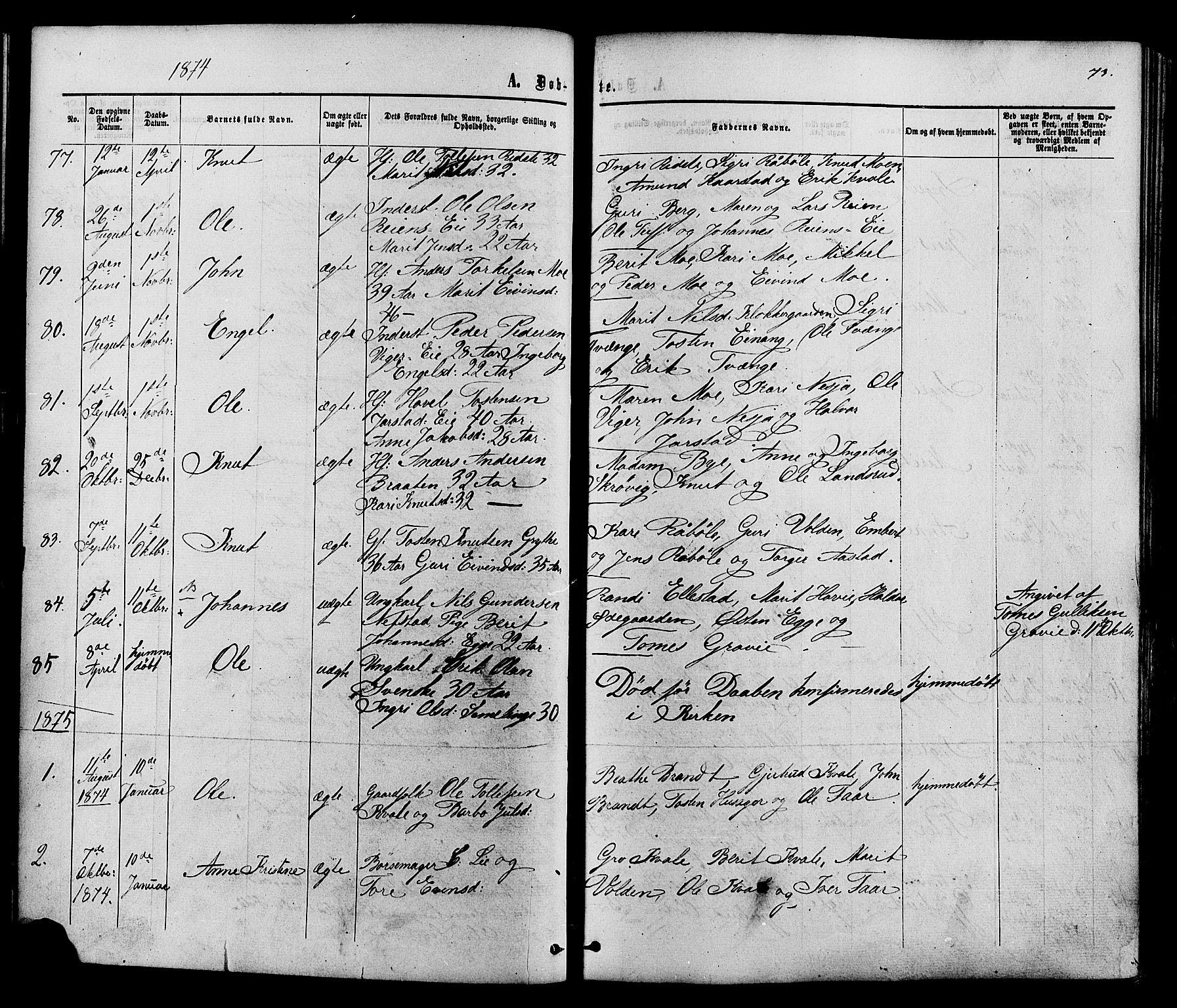 SAH, Vestre Slidre prestekontor, Ministerialbok nr. 3, 1865-1880, s. 73