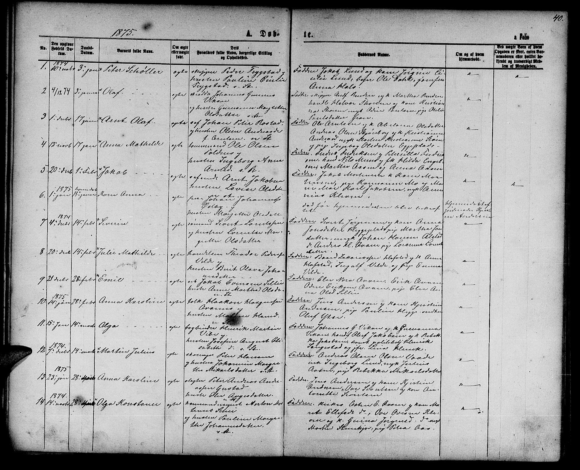 SAT, Ministerialprotokoller, klokkerbøker og fødselsregistre - Nord-Trøndelag, 739/L0373: Klokkerbok nr. 739C01, 1865-1882, s. 40
