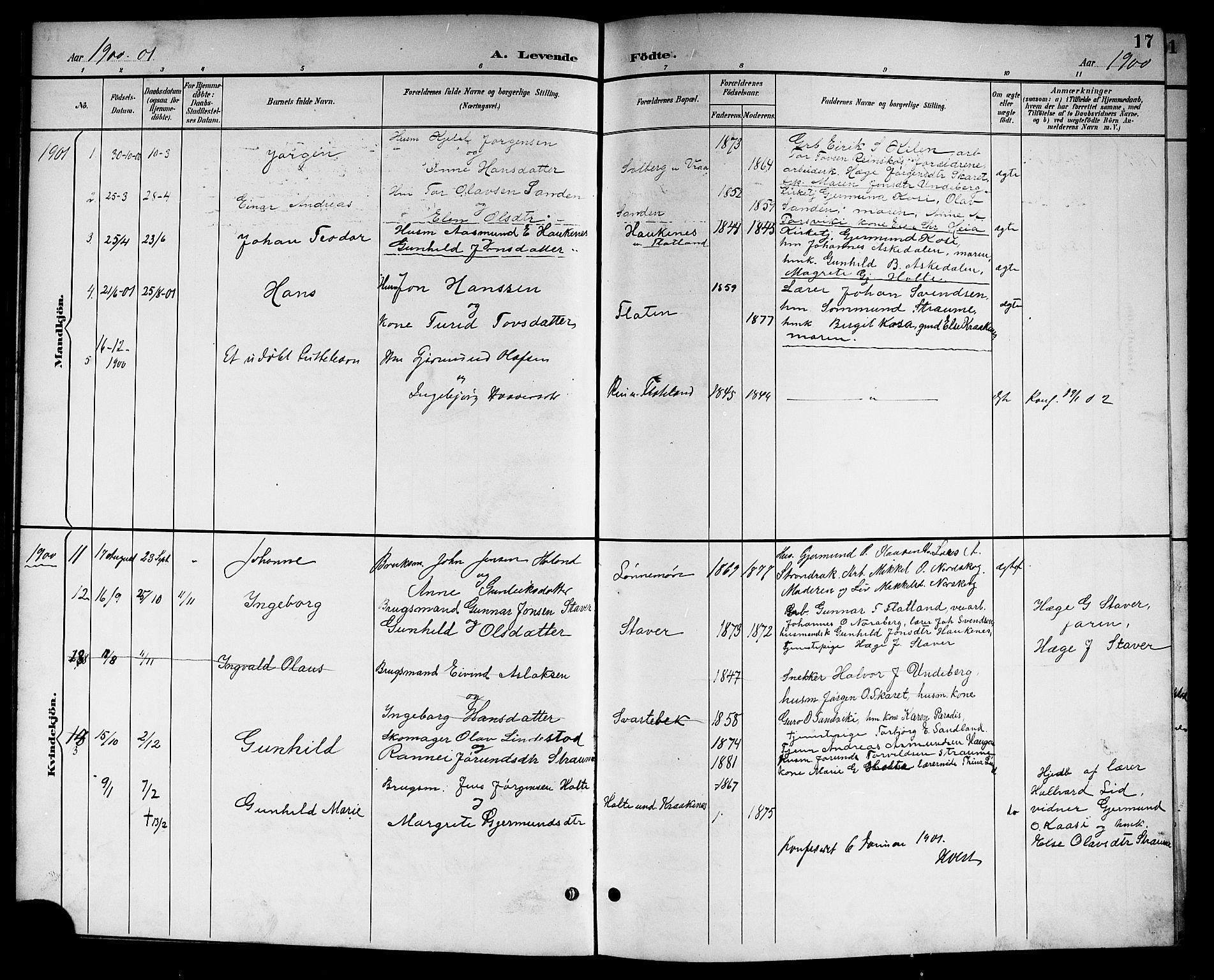 SAKO, Kviteseid kirkebøker, G/Gc/L0001: Klokkerbok nr. III 1, 1893-1916, s. 17