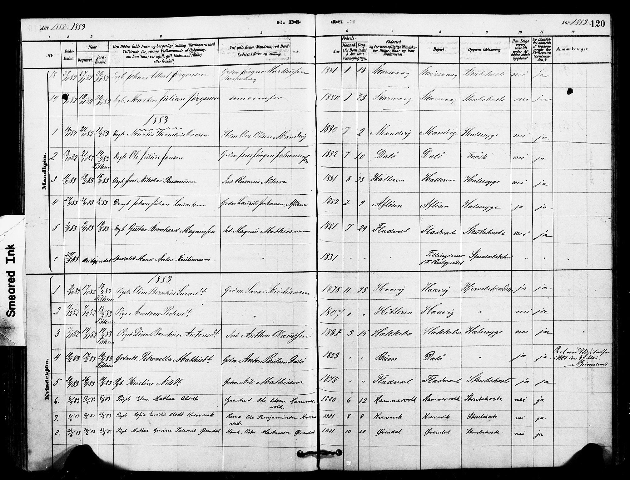 SAT, Ministerialprotokoller, klokkerbøker og fødselsregistre - Sør-Trøndelag, 641/L0595: Ministerialbok nr. 641A01, 1882-1897, s. 120