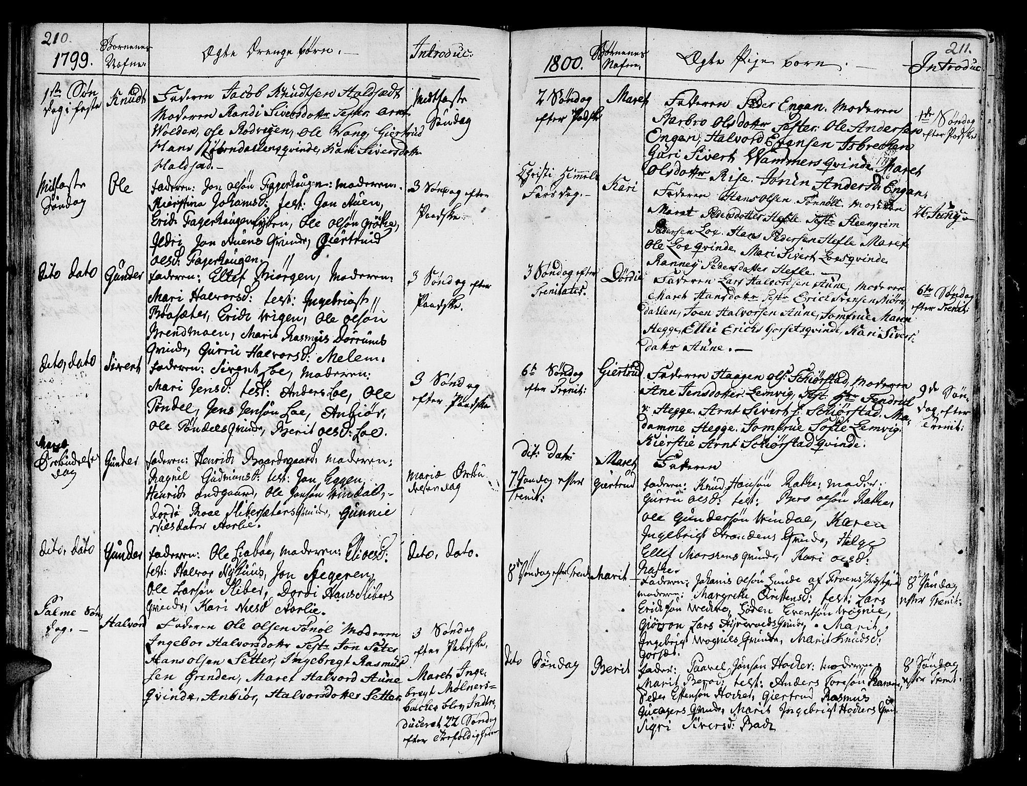 SAT, Ministerialprotokoller, klokkerbøker og fødselsregistre - Sør-Trøndelag, 678/L0893: Ministerialbok nr. 678A03, 1792-1805, s. 210-211