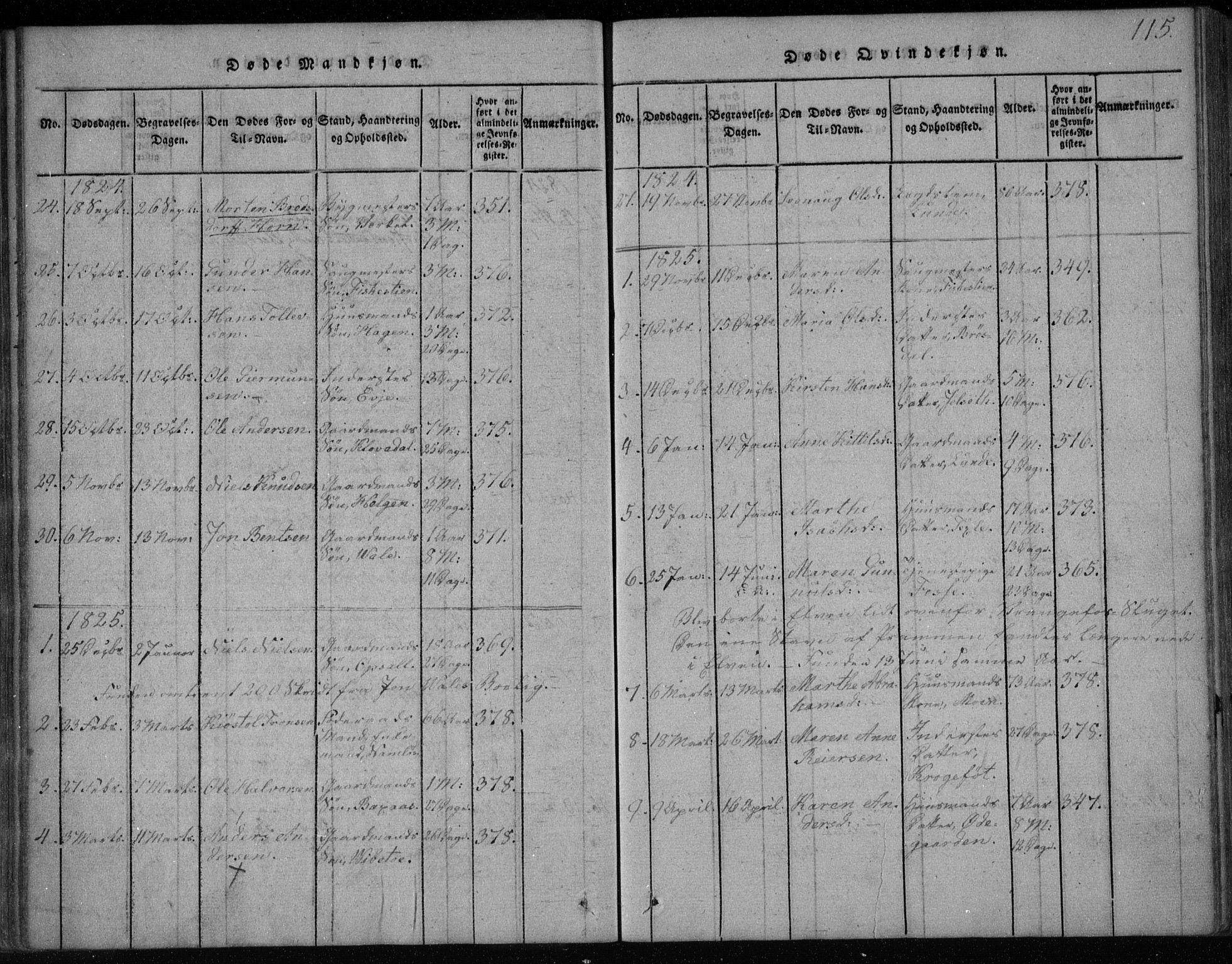 SAKO, Holla kirkebøker, F/Fa/L0003: Ministerialbok nr. 3, 1815-1830, s. 115