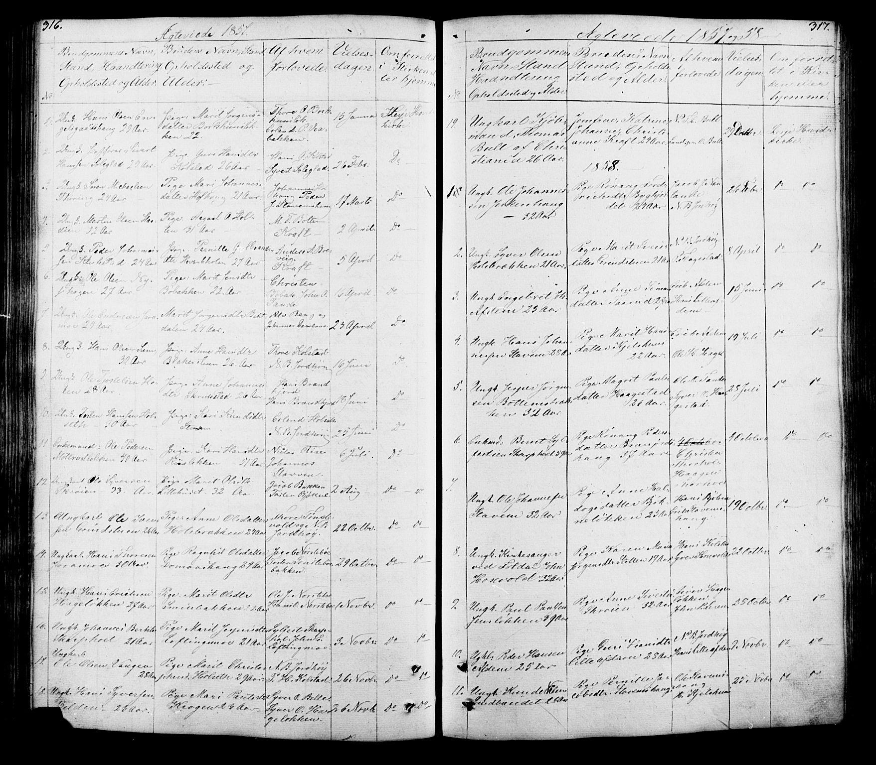 SAH, Lesja prestekontor, Klokkerbok nr. 5, 1850-1894, s. 316-317